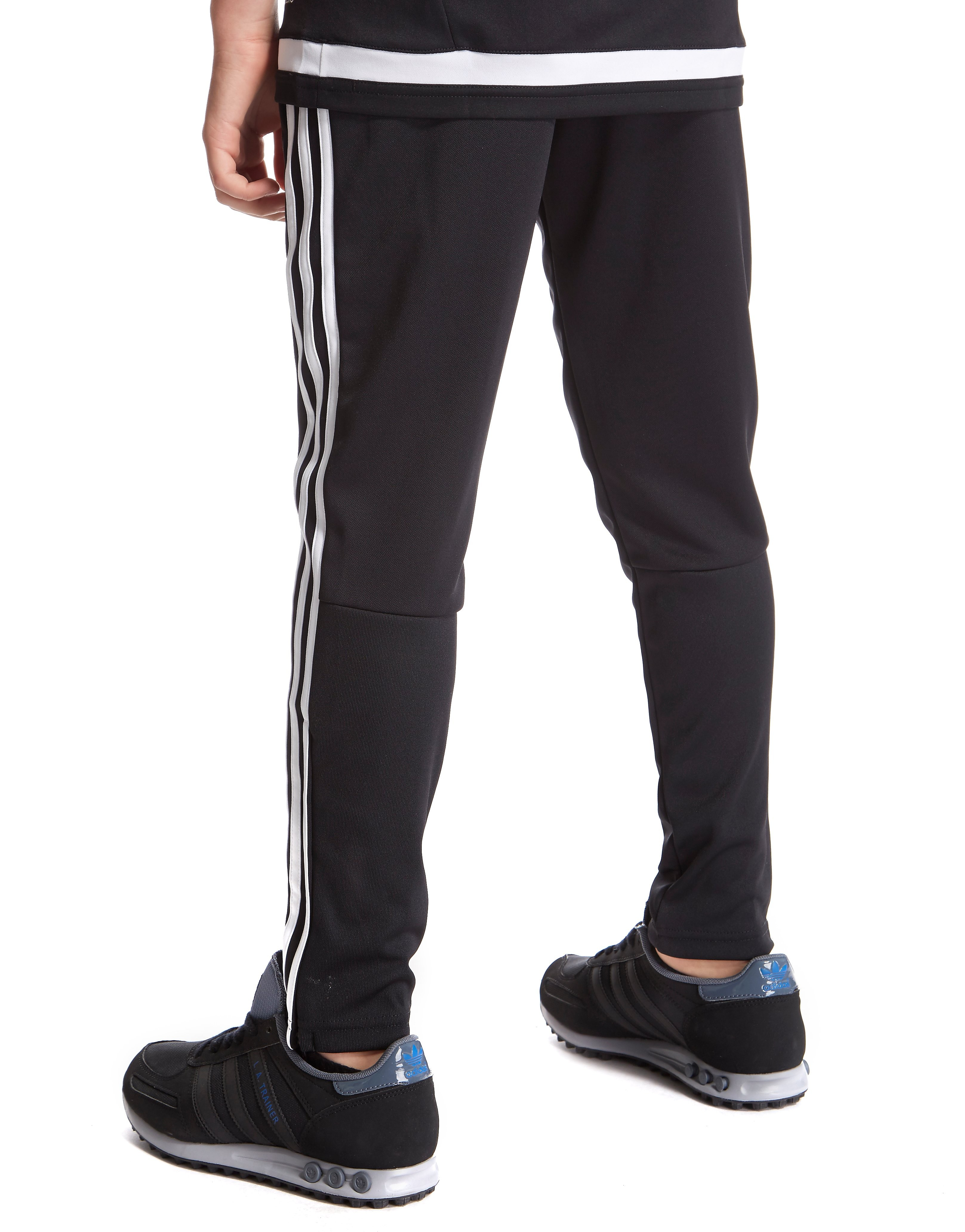 adidas Wales Training Pants Junior