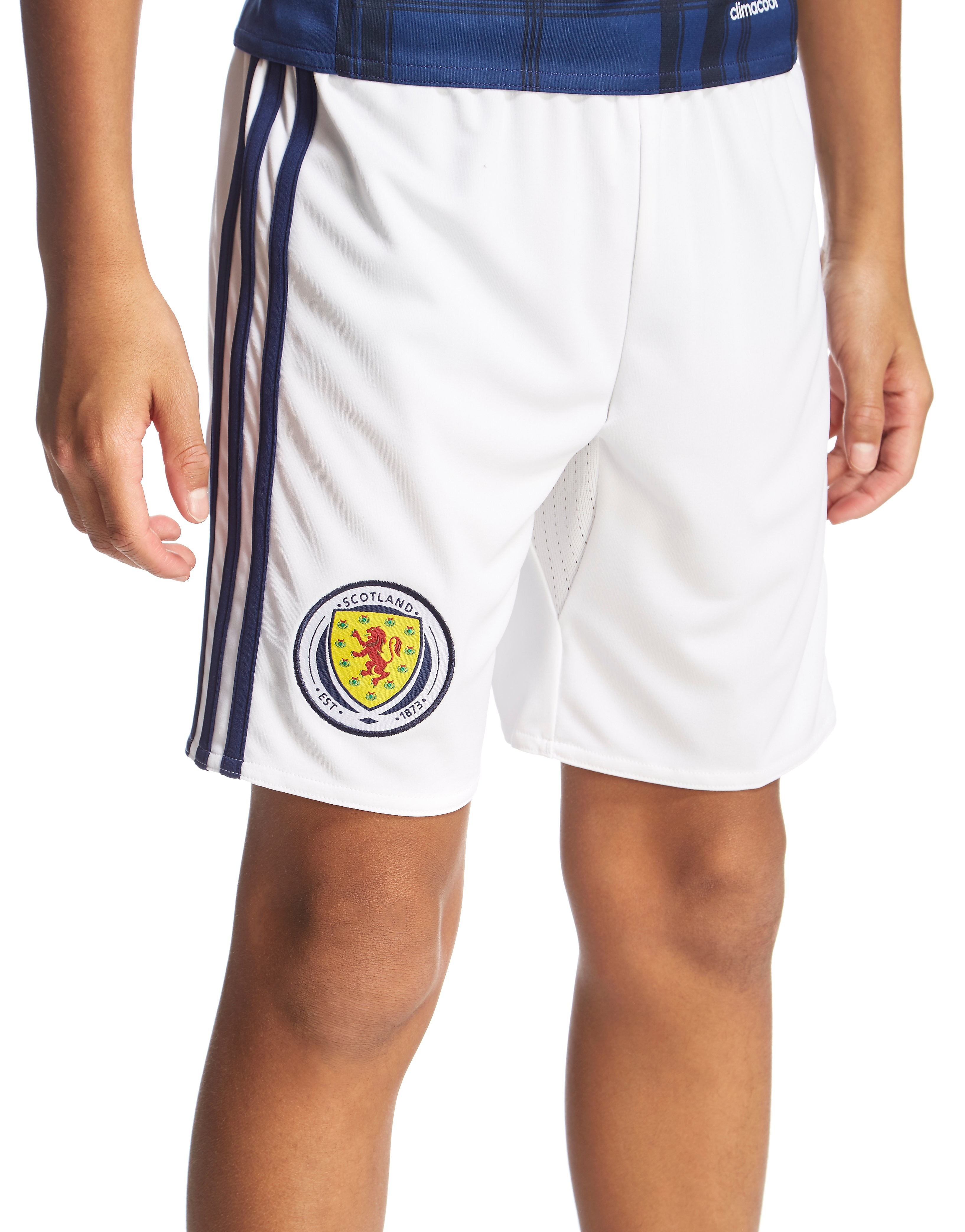 adidas Scotland 2016 Home Shorts Junior