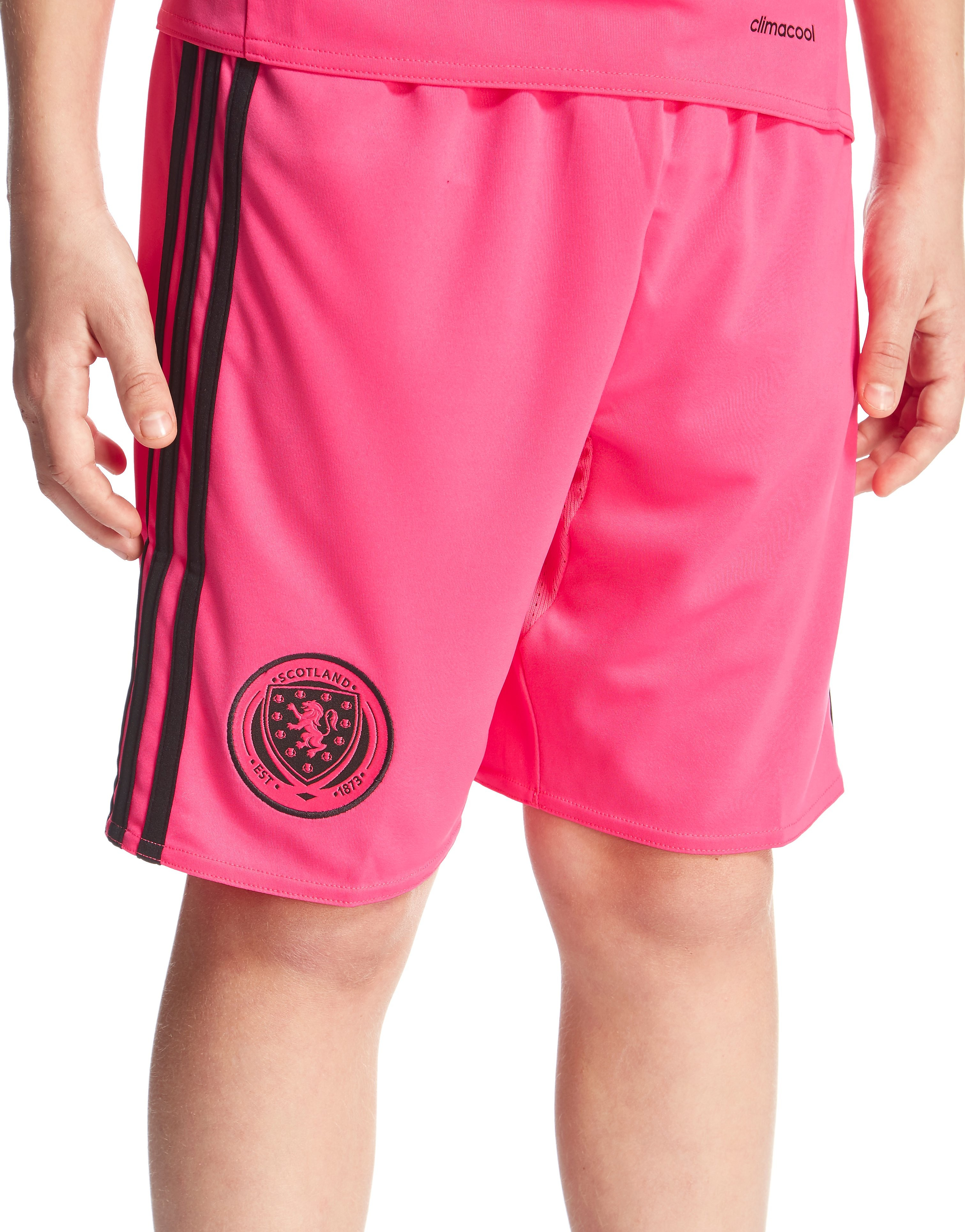adidas Scotland Away 2016 Shorts Junior
