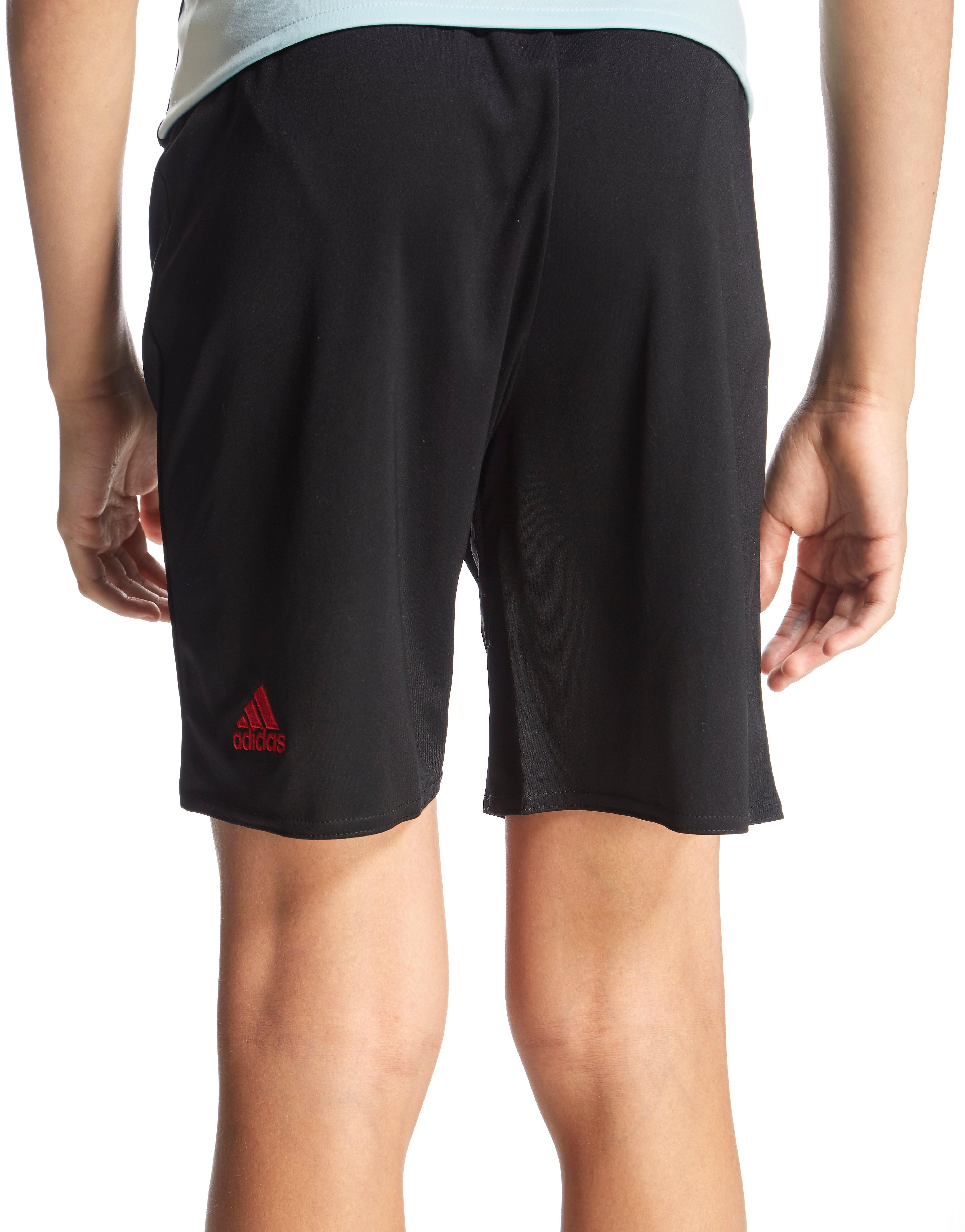 adidas Belgium 2016 Away Shorts Junior