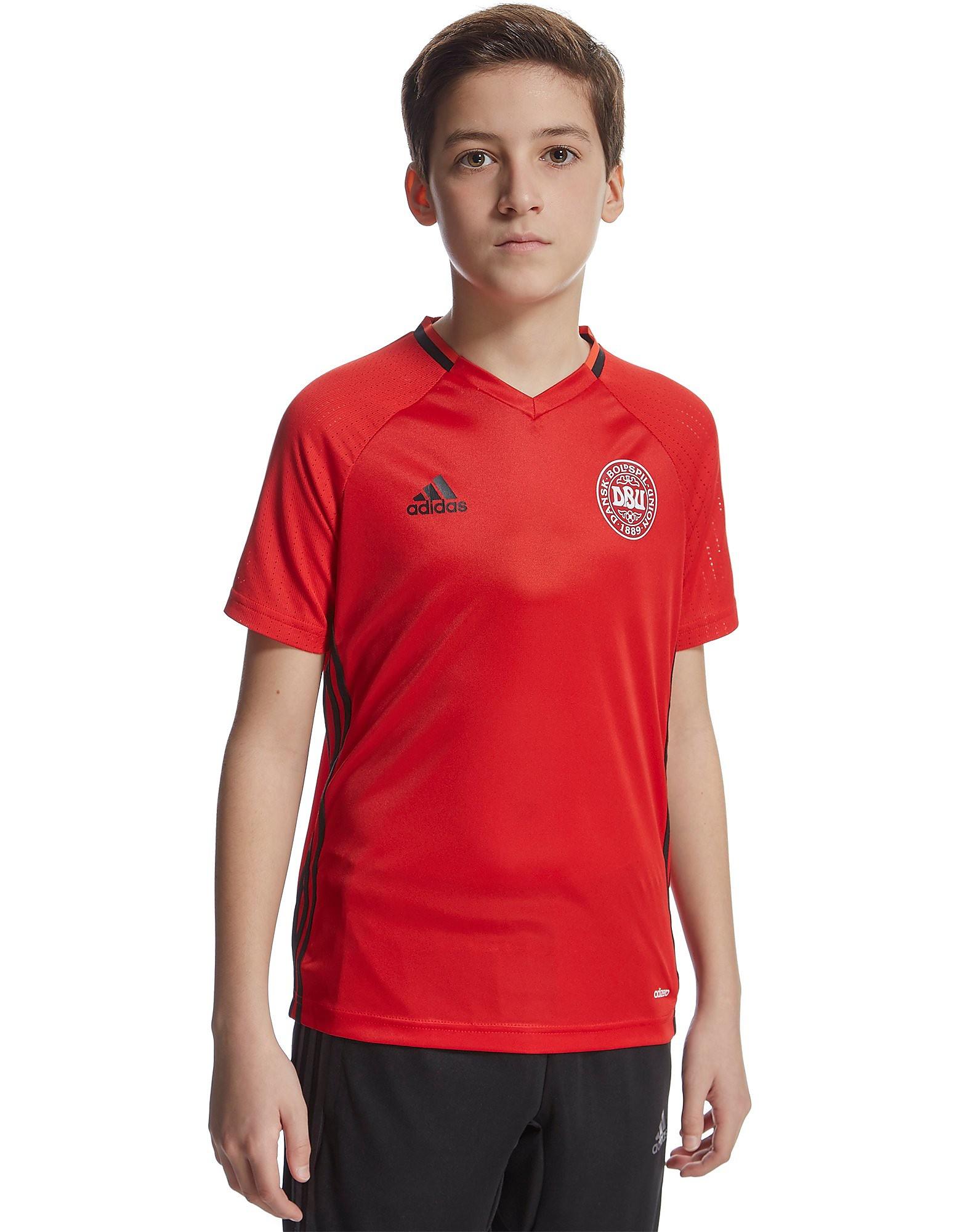 adidas Denmark Training Shirt Junior