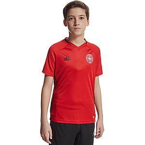 e628cb58626b adidas Denmark Training Shirt Junior ...