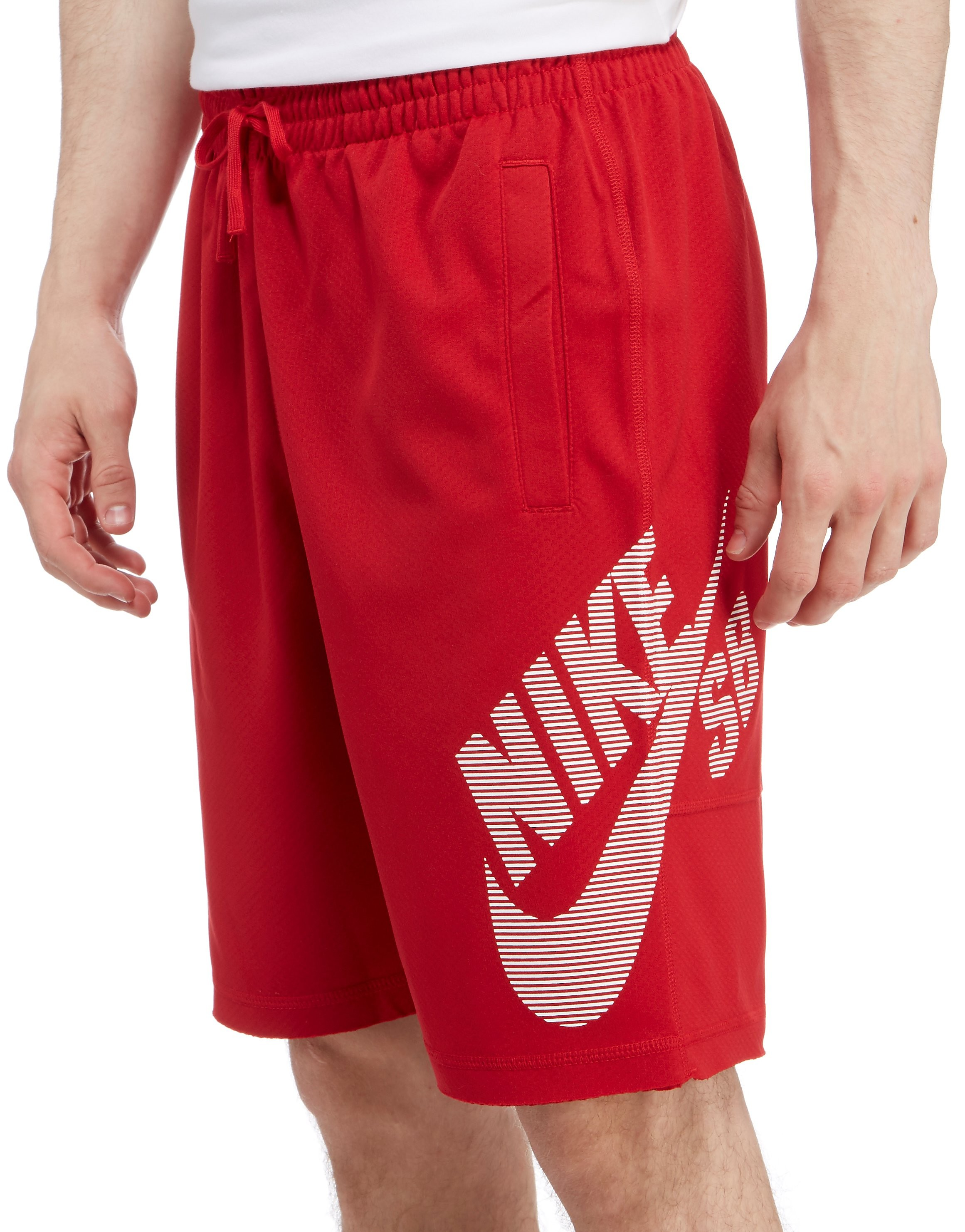 Nike SB Fleece Short