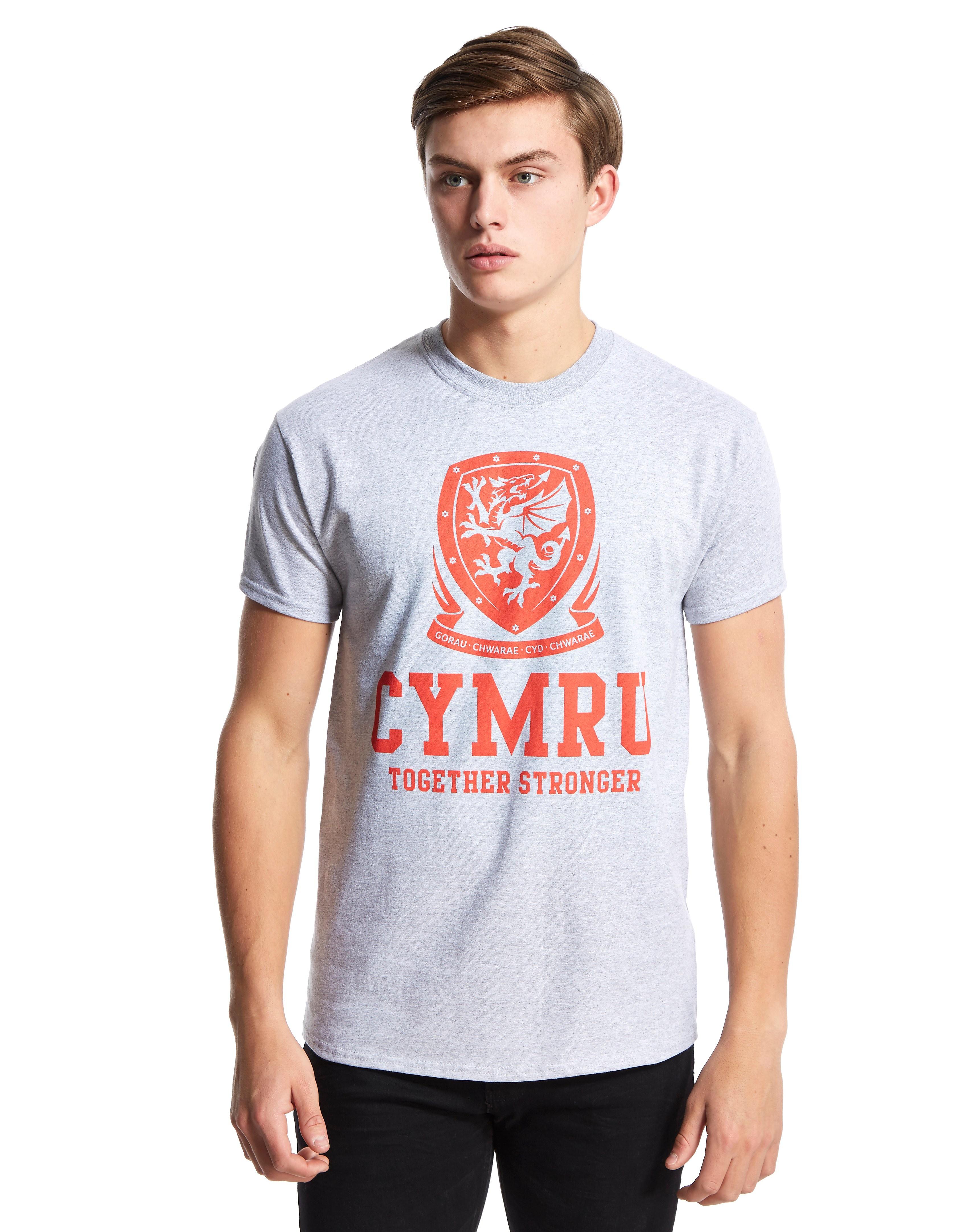 Official Team Camiseta Cymru de Gales