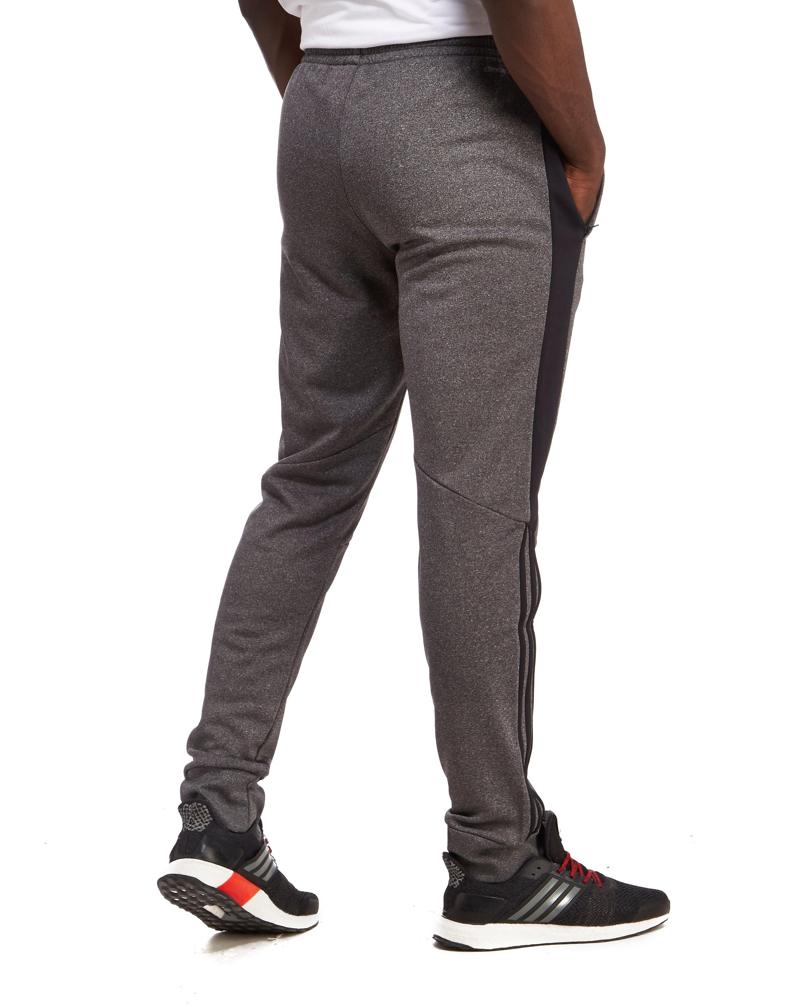 adidas Reflex Poly Pants