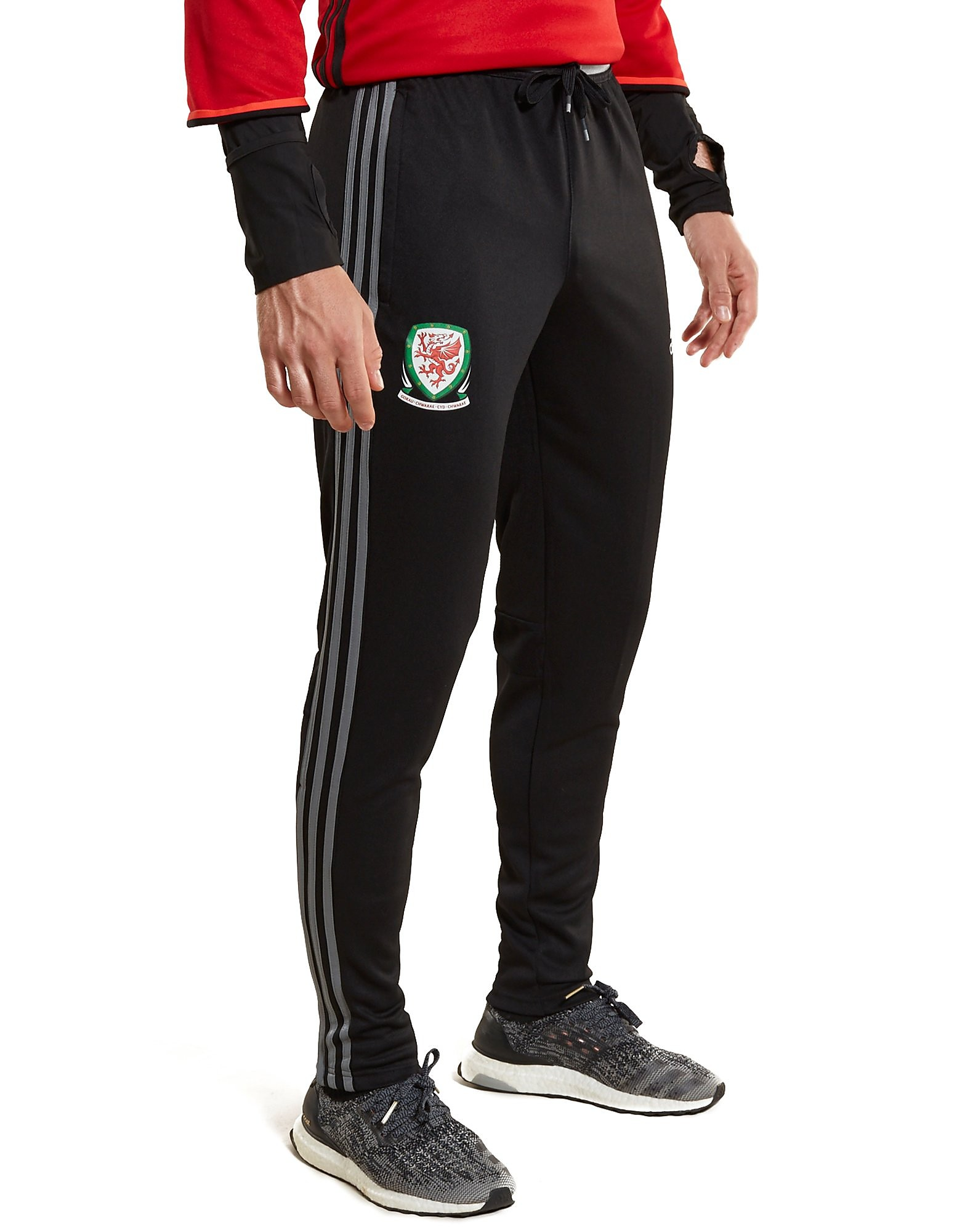 adidas Wales 2016/17 Training Pants PRE-ORDER