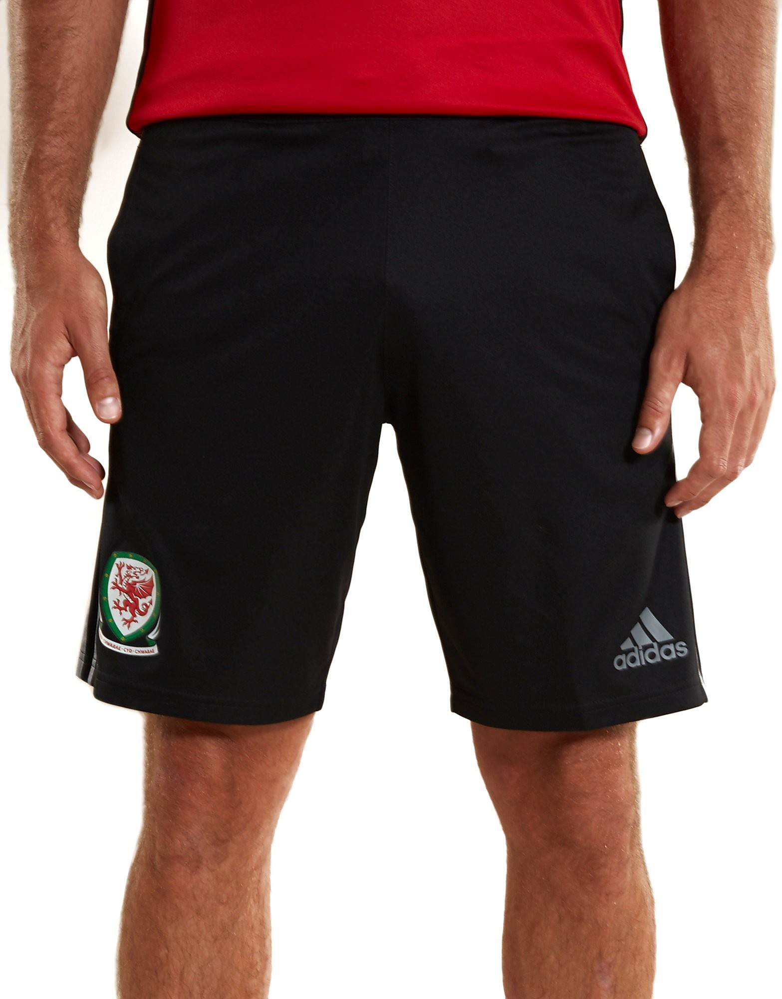adidas Wales 2016/17 Training Shorts