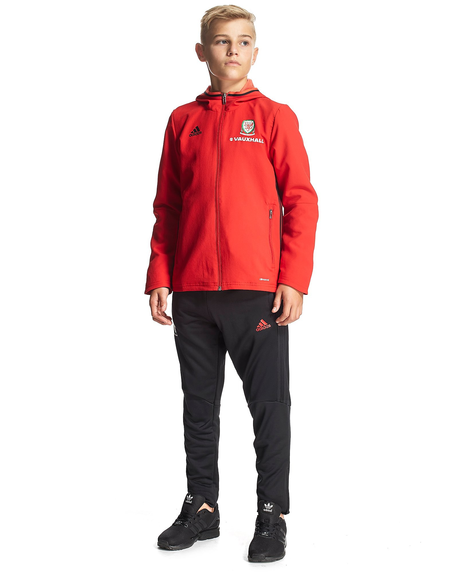 adidas Wales 2016/17 Presentation Suit Junior