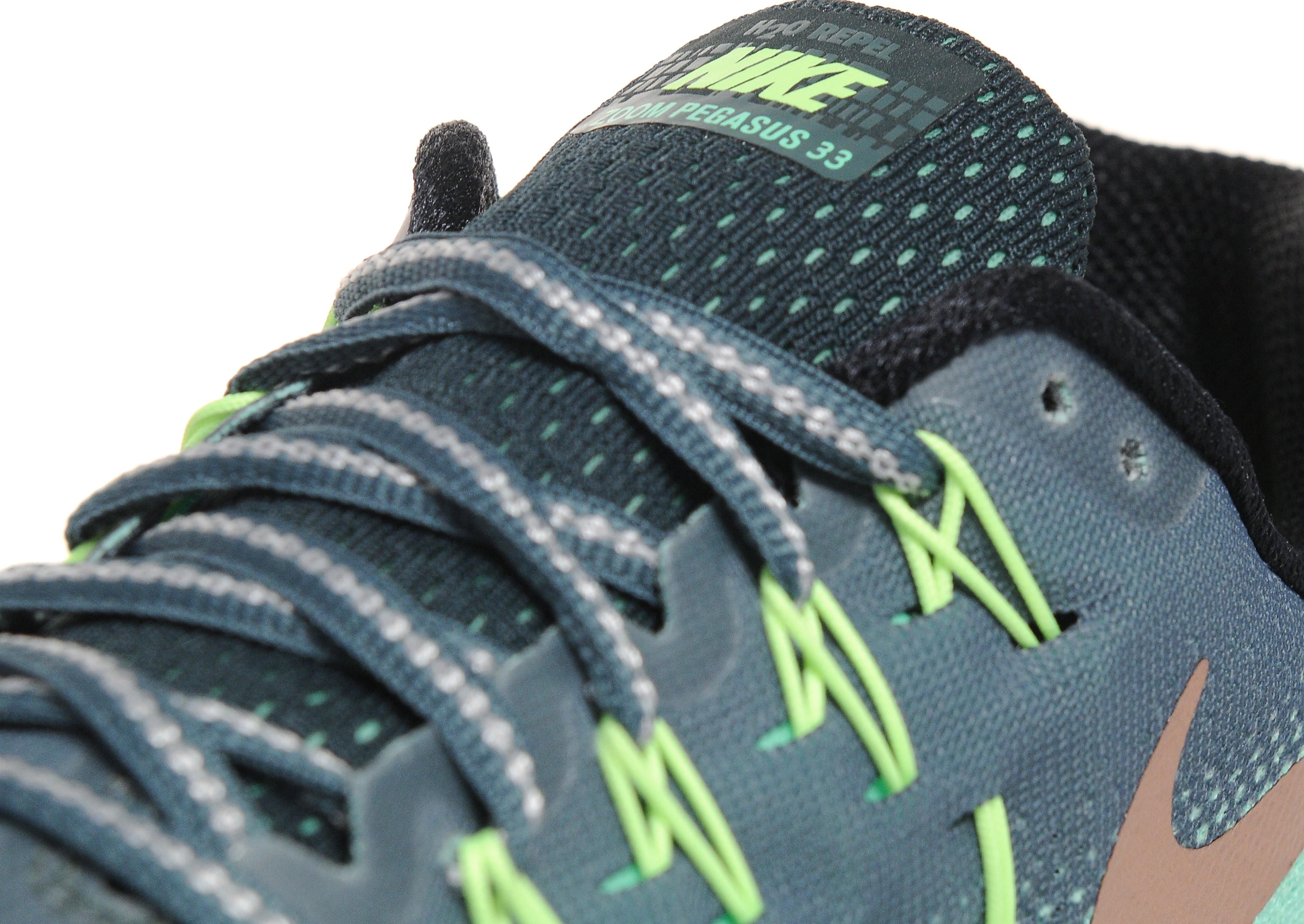 Nike Air Zoom Pegasus 33 Shield Women's
