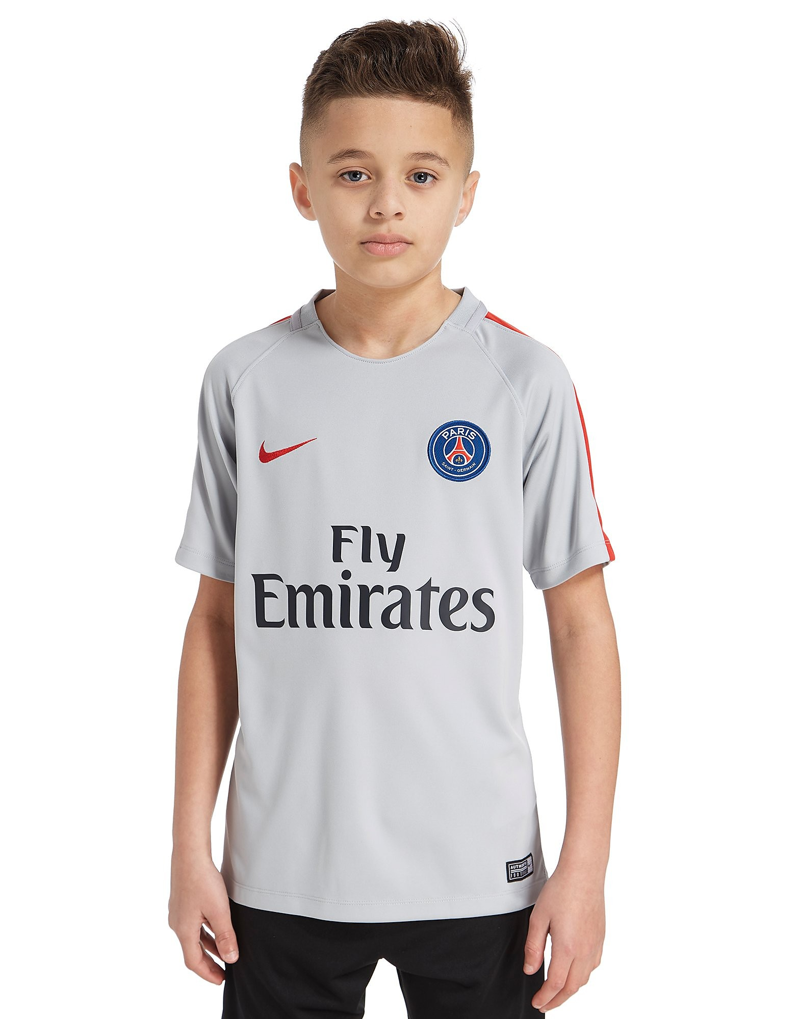 Nike Paris Saint-Germain Training Shirt