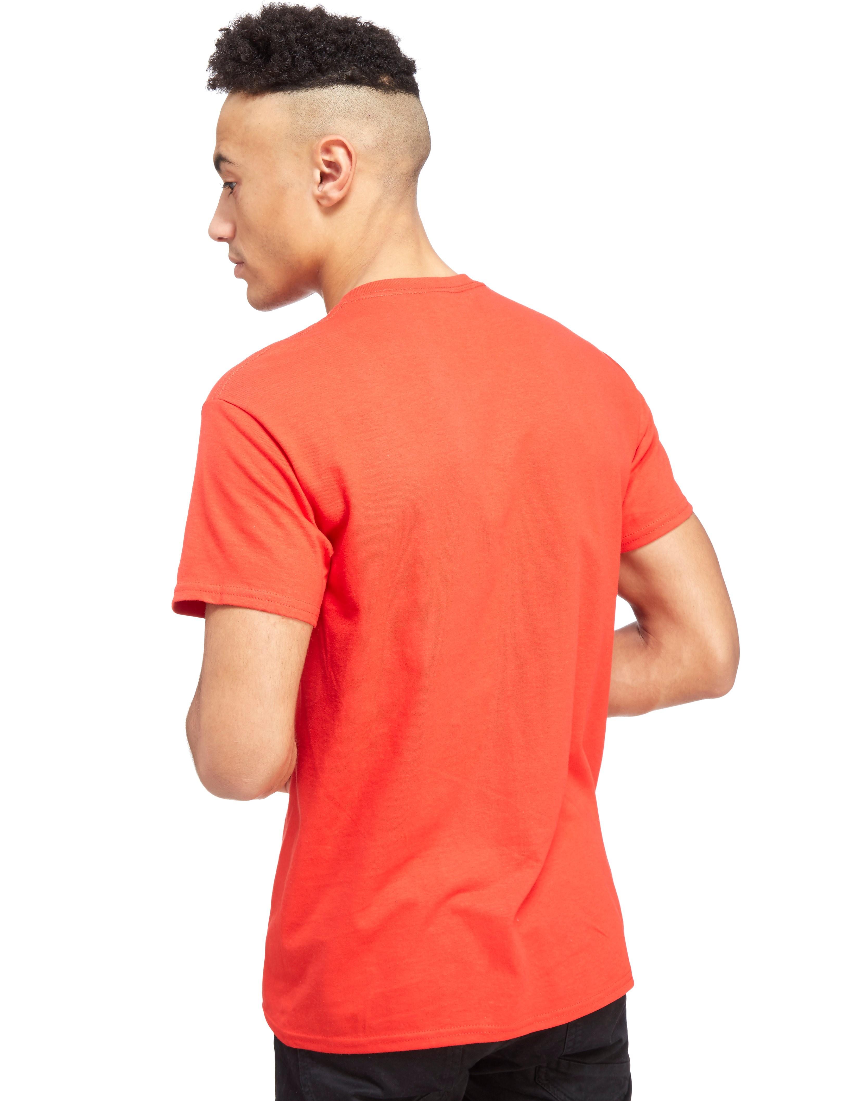 Official Team Denmark Flag T-Shirt