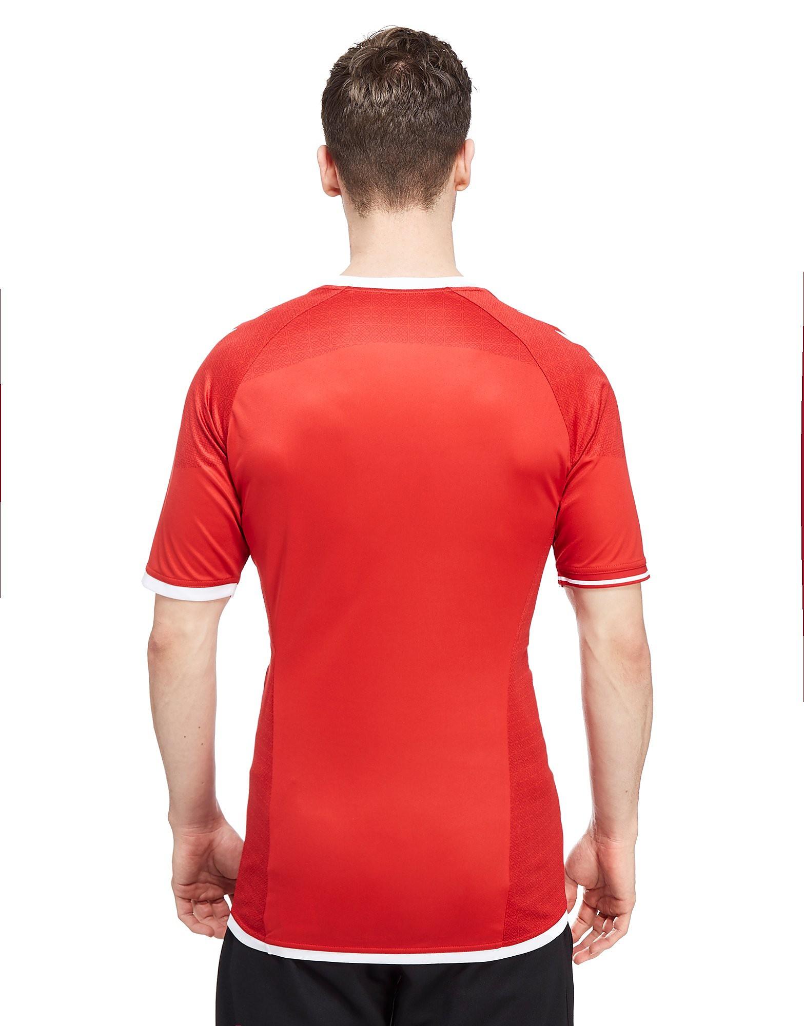 Hummel Camiseta de la primera equipación de Dinamarca 2016/17