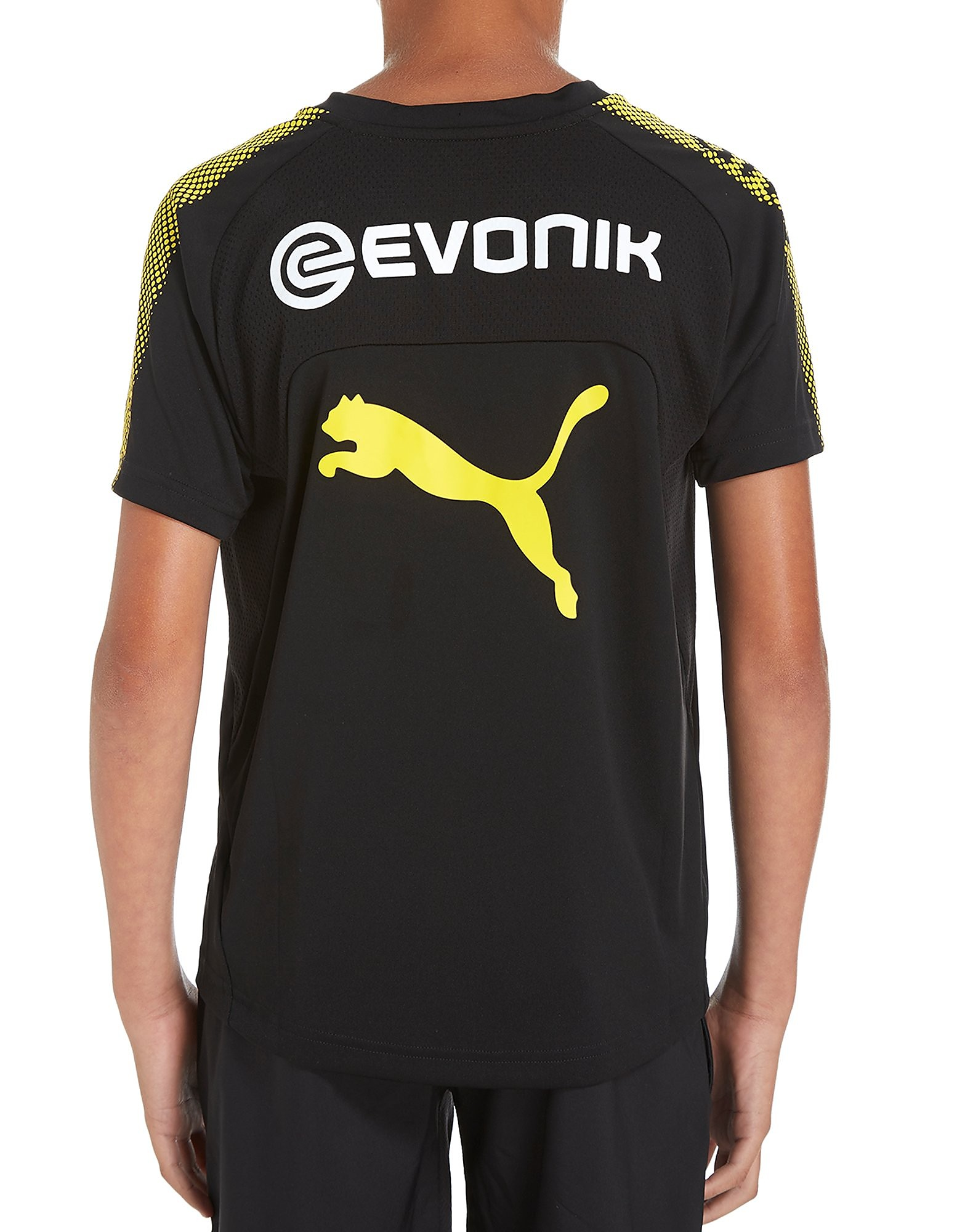 PUMA Borussia Dortmund 2017 Training Junior