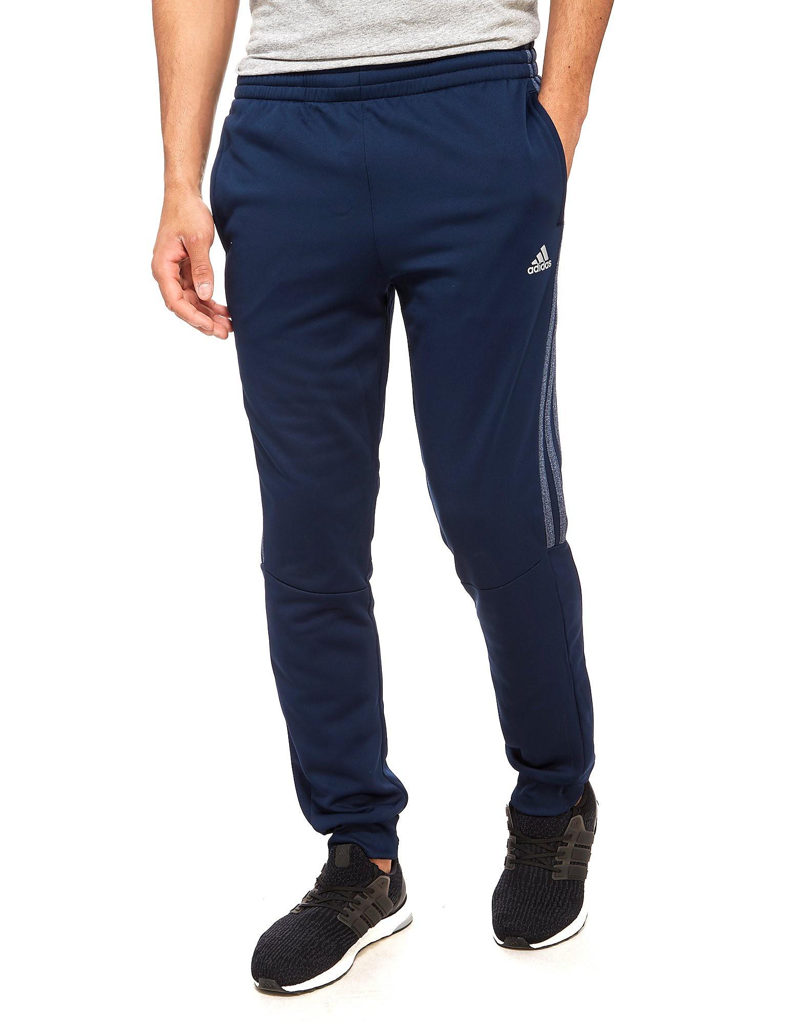 adidas Pantalones Reflex Poly