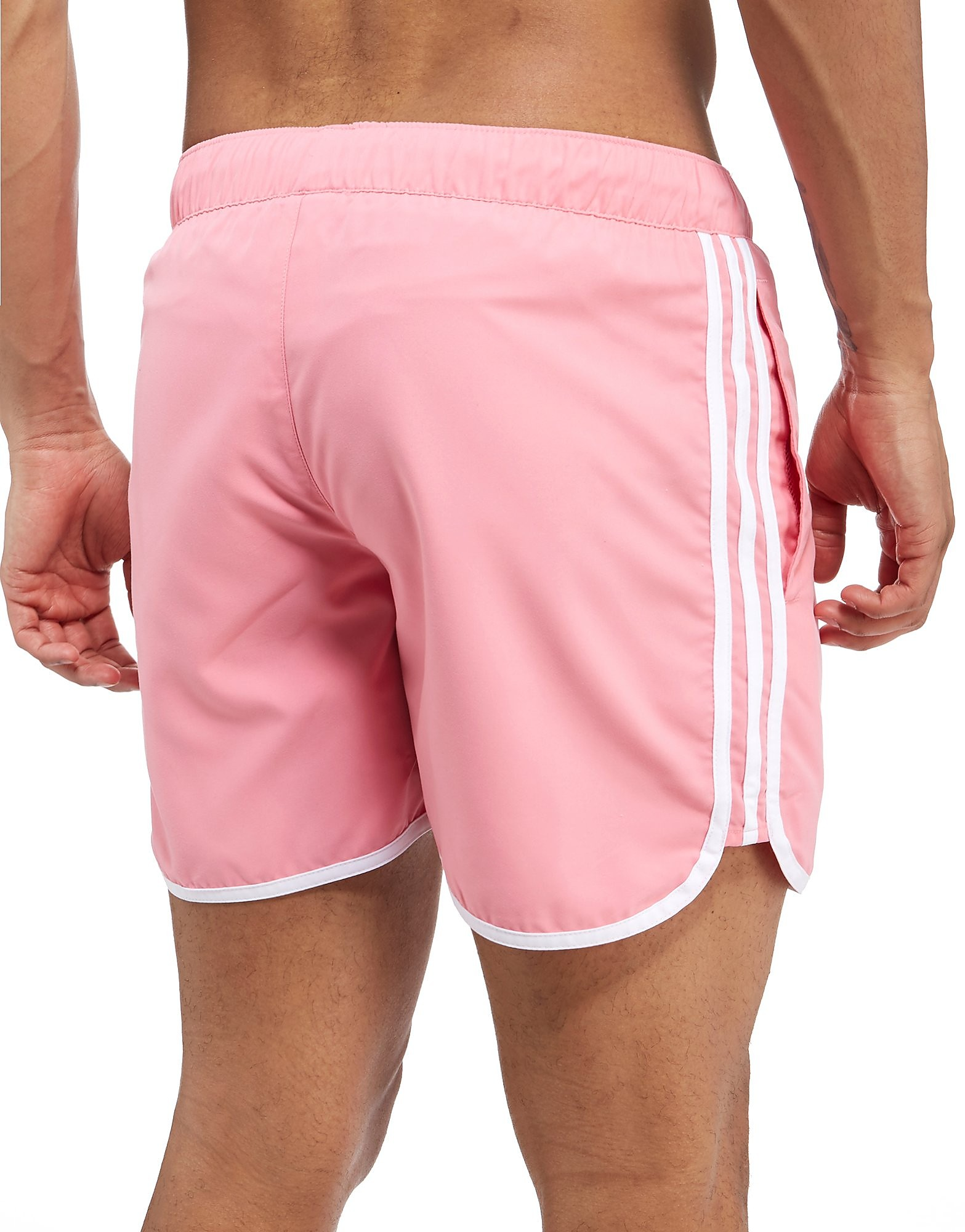 adidas Originals Palm Shorts