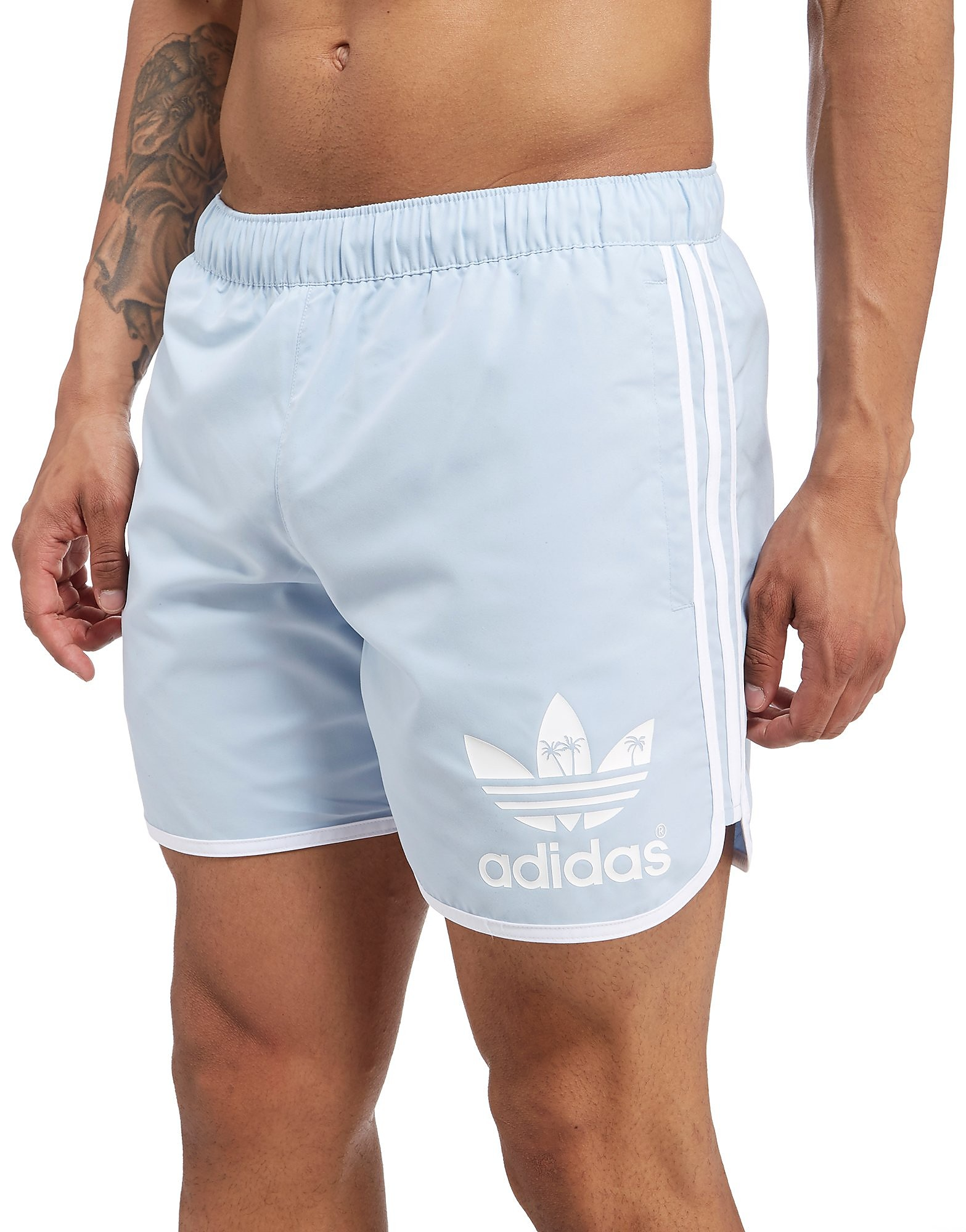 adidas Originals Short Palm Homme