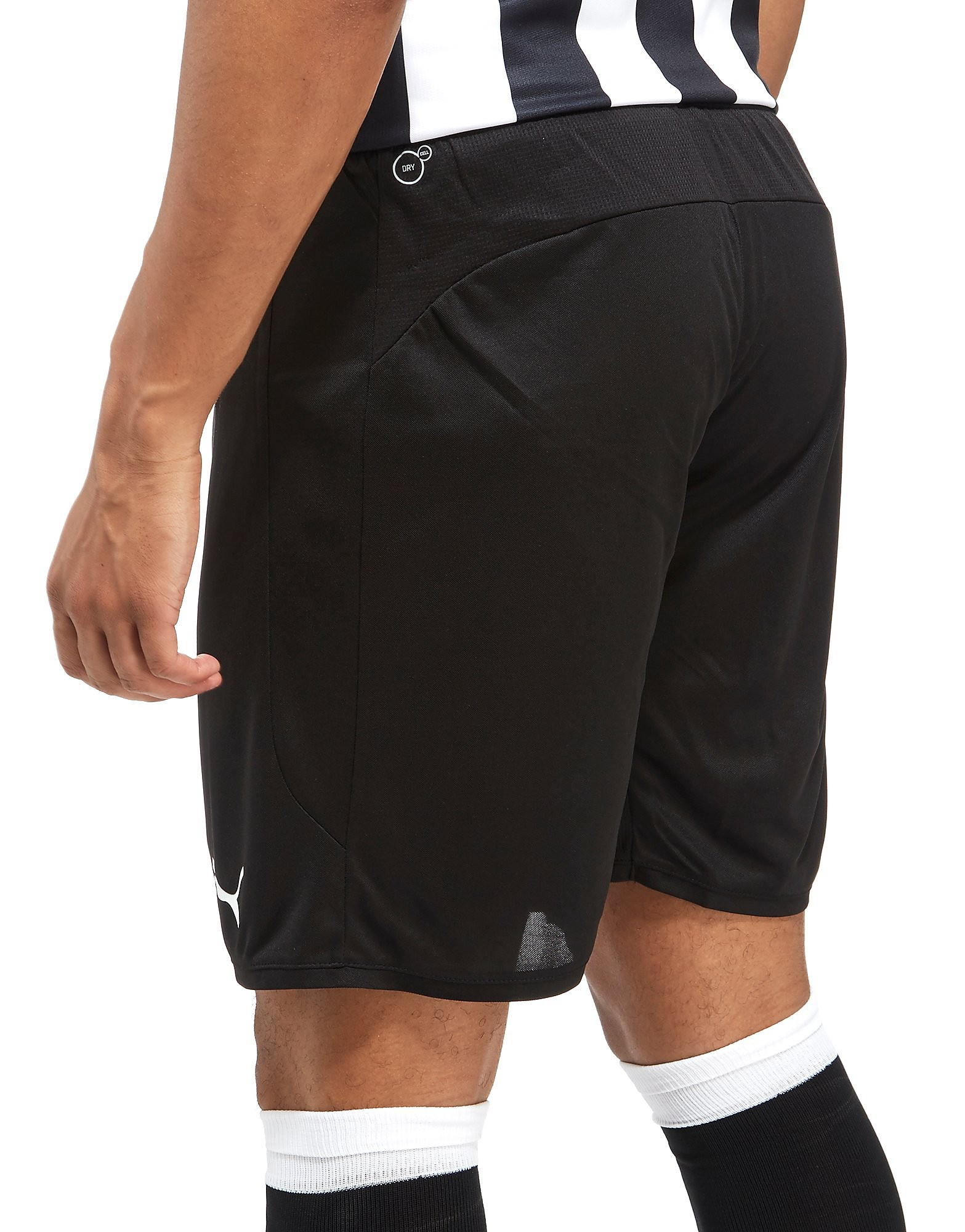 PUMA Newcastle United FC 2017/18 Home Shorts