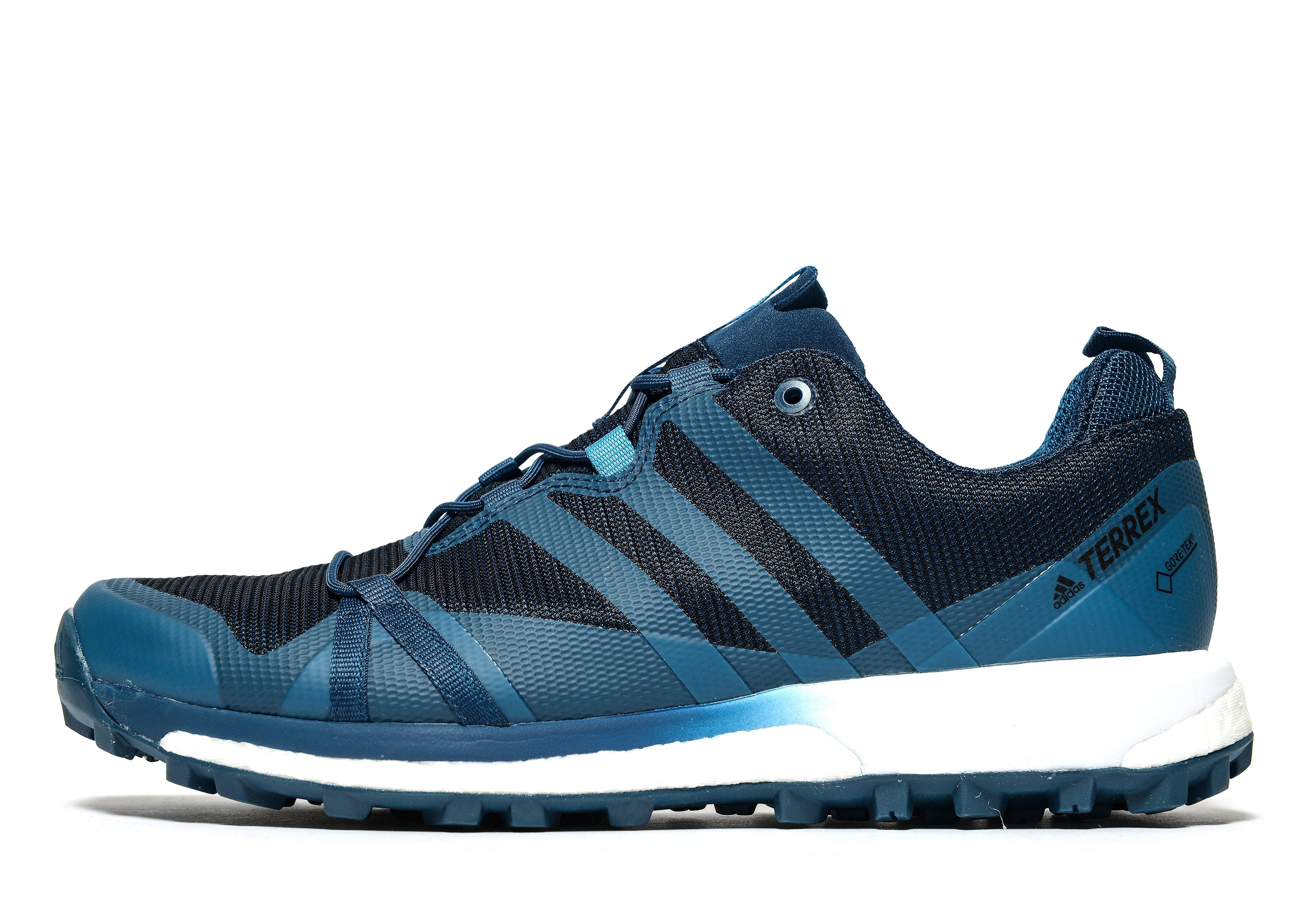 adidas Terrex Agravic GTX Trail Running Shoes