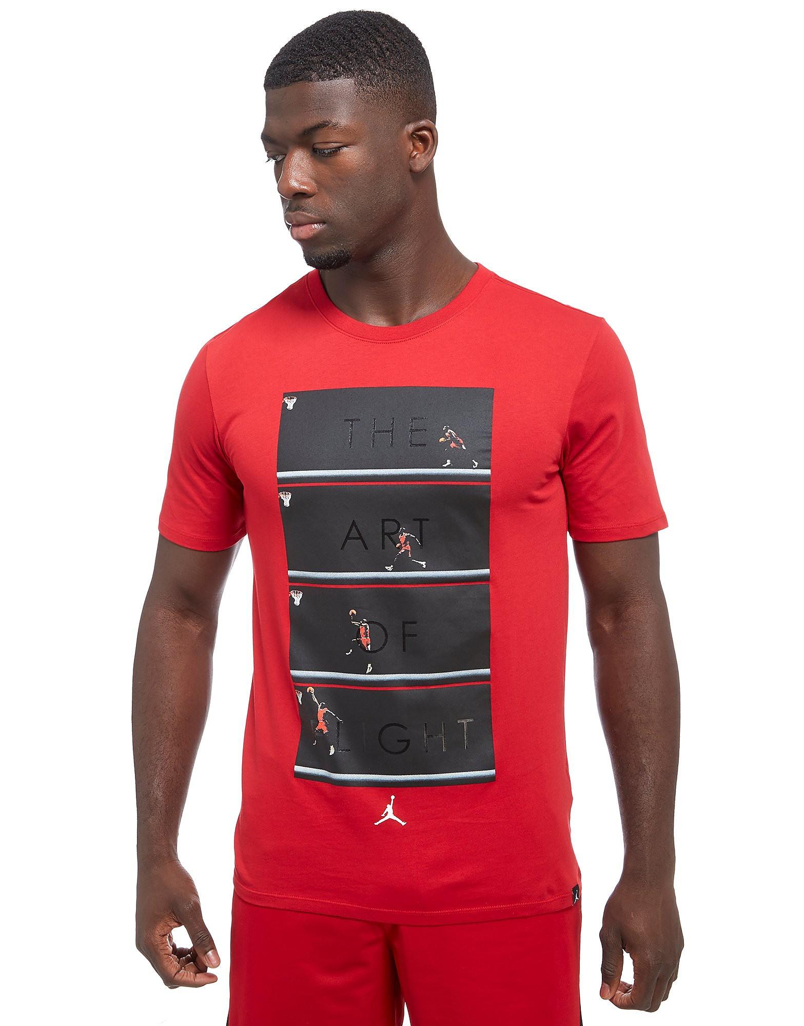 Jordan Jordan Art of Flight T-Shirt