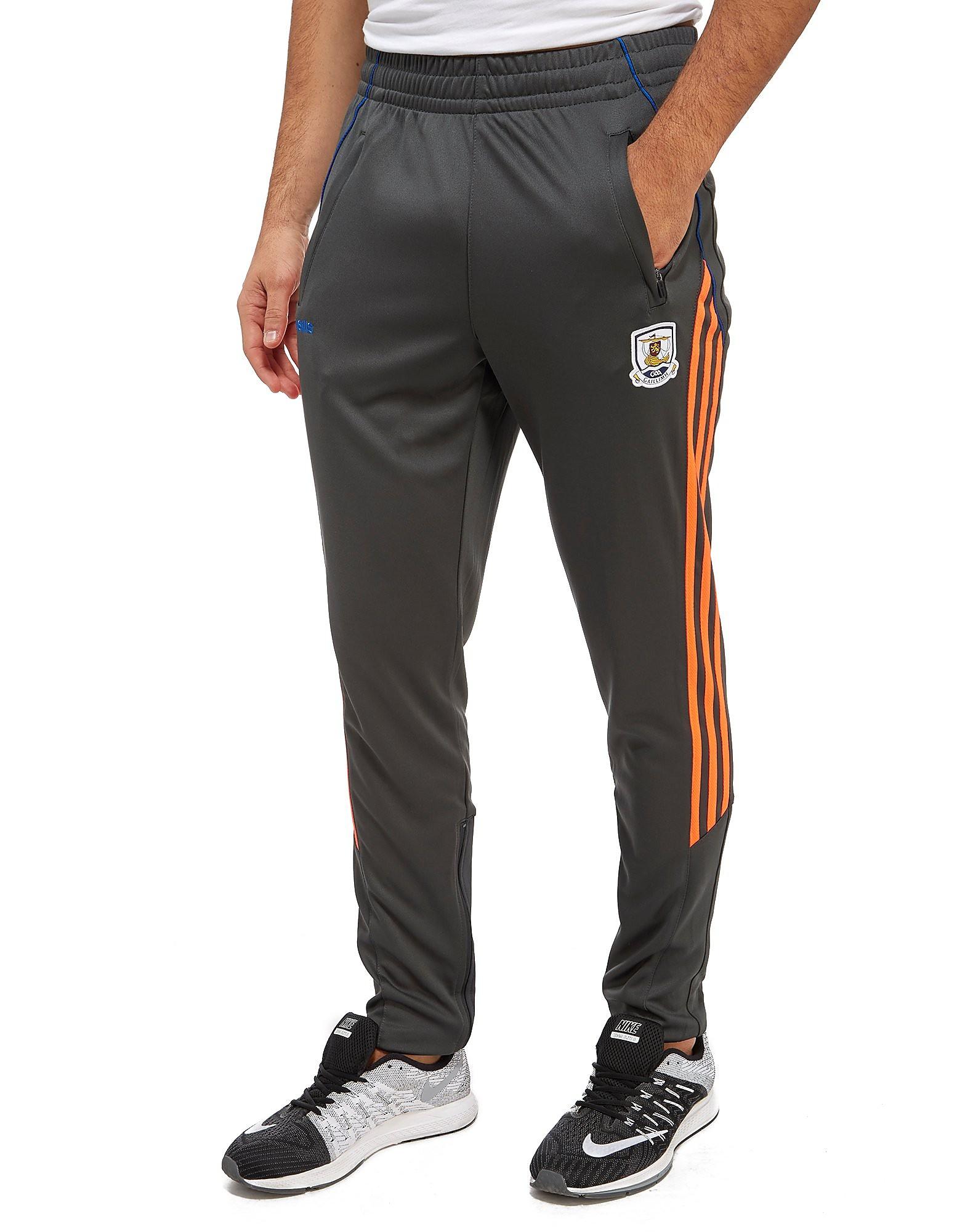 O'Neills Galway Training Pants
