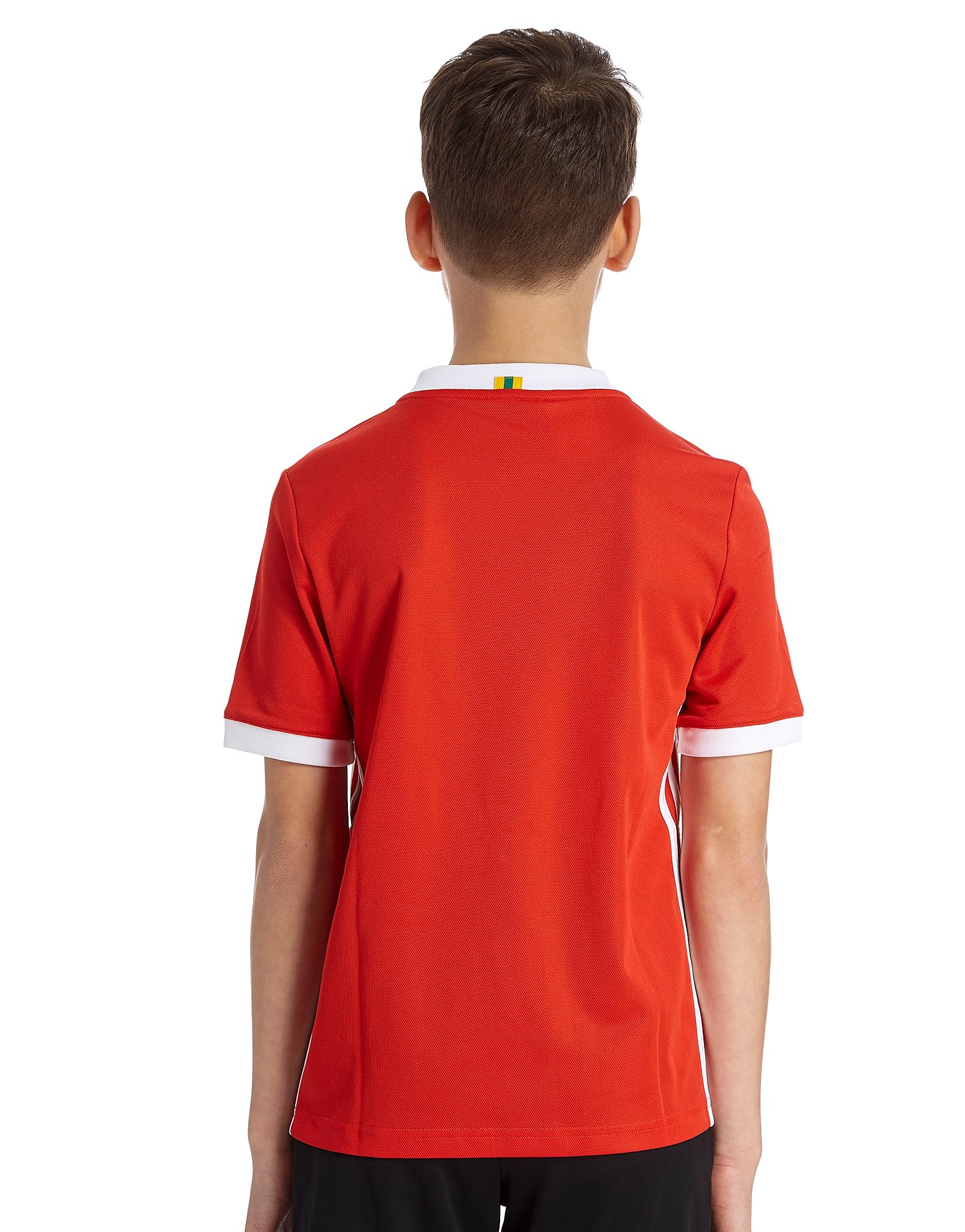 adidas Wales 2017/18 Home Shirt Junior