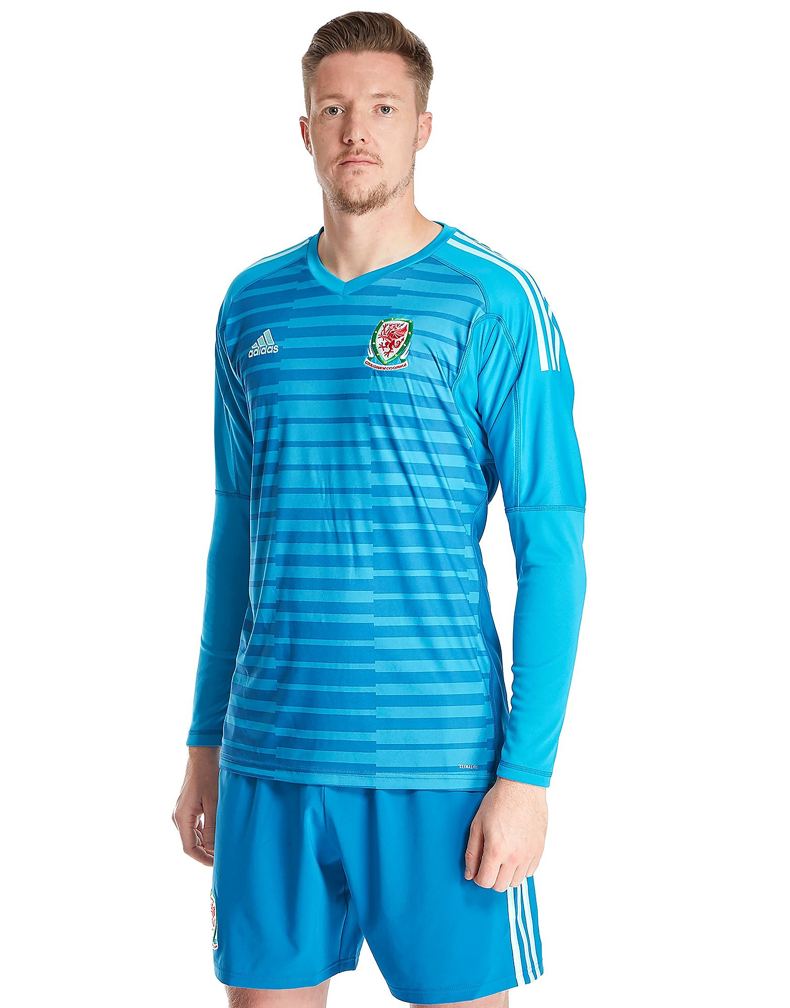 adidas Wales 2018 Home Goalkeeper Shirt Heren - Aqua - Heren