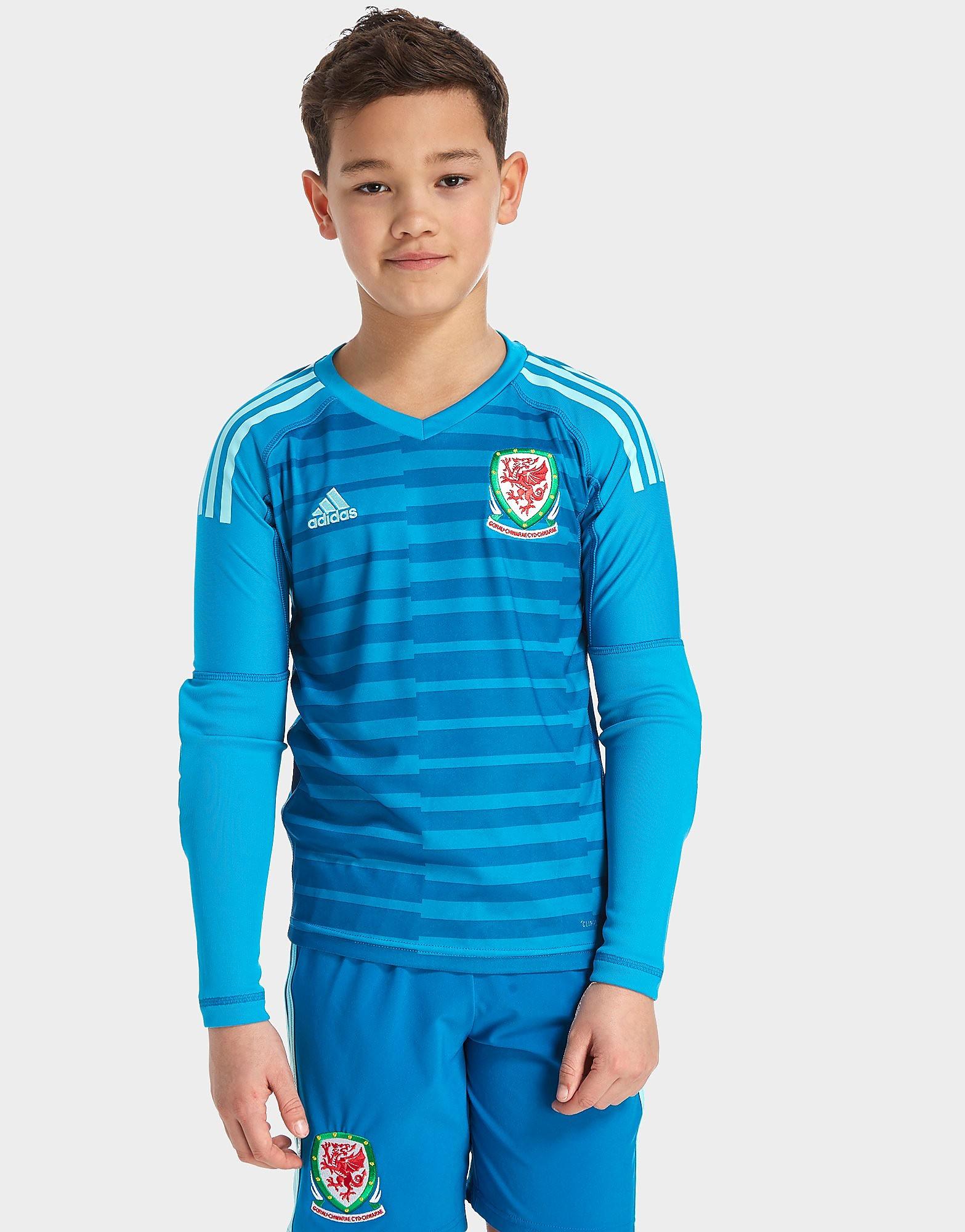 adidas Wales 2018 Home Goalkeeper Shirt Junior