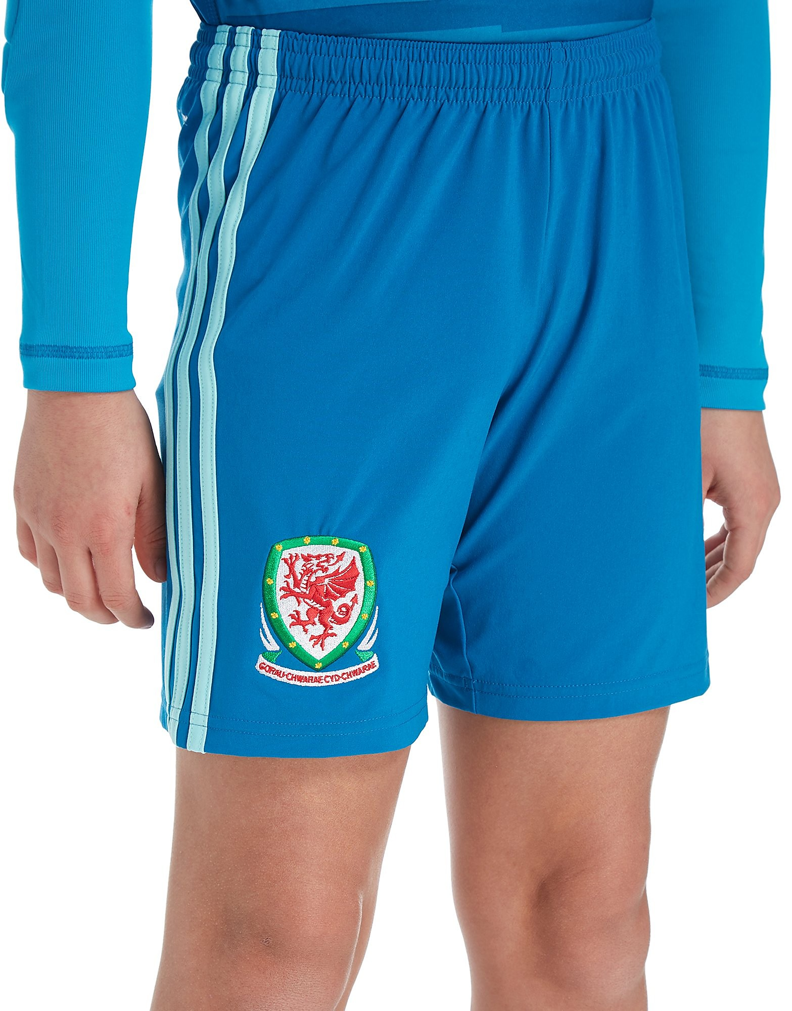 adidas Wales 2018/19 Home Goalkeeper Shorts Junior - Blauw - Kind