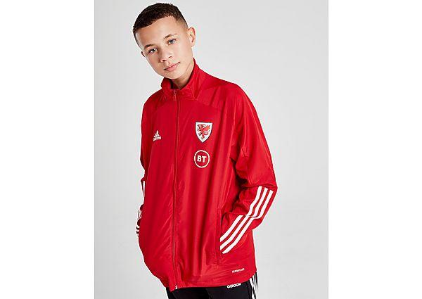 adidas chaqueta selección de Gales Condivo 20 Presentation júnior, Red