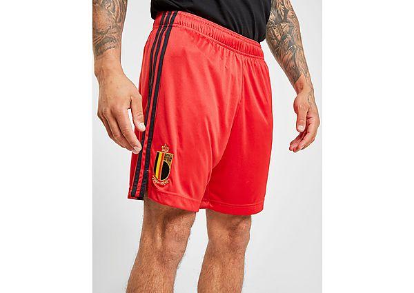 adidas pantalón corto selección de Bélgica 2020 1.ª equipación, Red