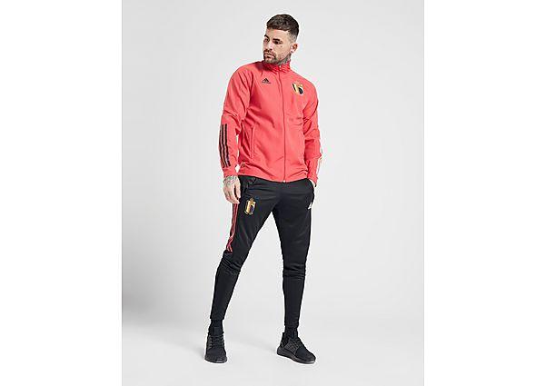 adidas pantalón de chándal Belgium Training