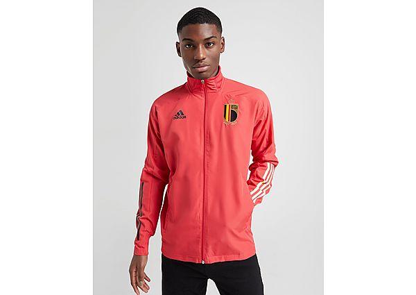 adidas chaqueta selección de Bélgica Presentation, Red/S