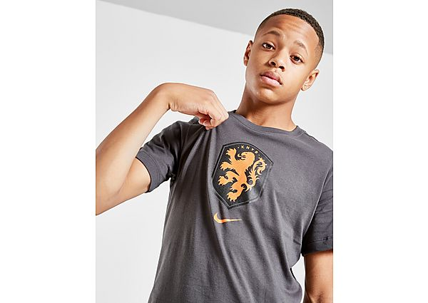 Nike camiseta Paises Bajos Crest júnior, Grey