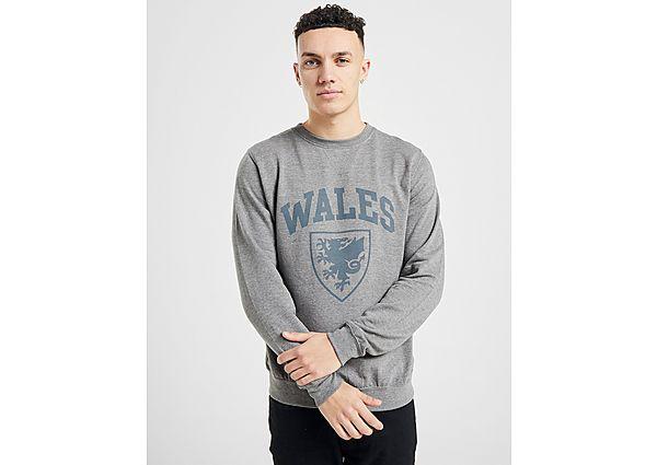 Official Team sudadera selección de Gales, Grey
