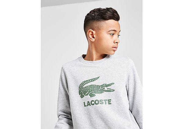 Comprar deportivas Lacoste sudadera Large Croc júnior