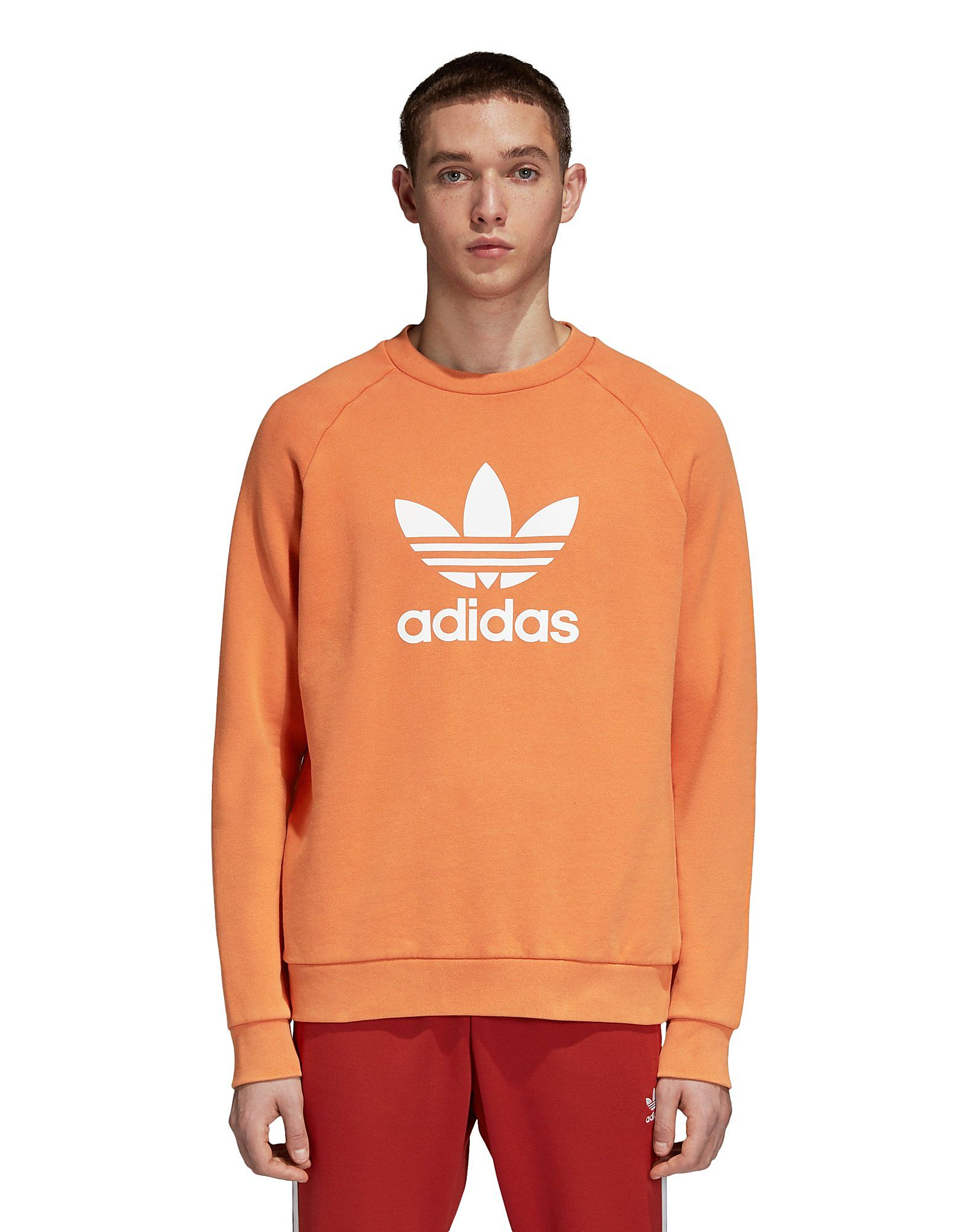 ADIDAS Trefoil Warm-Up Sweatshirt   JD Sports fe39fb4095