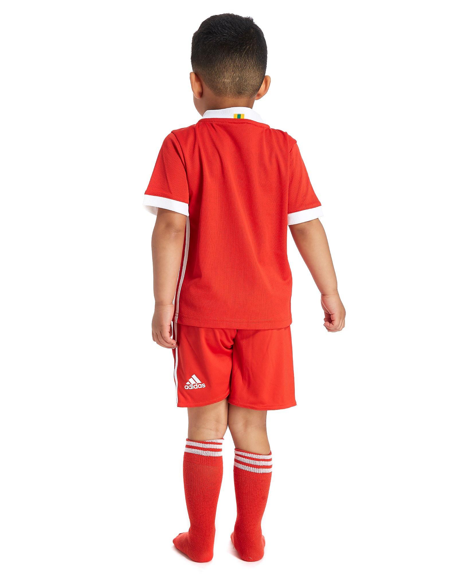adidas Wales 2017/18 Home Kit Children