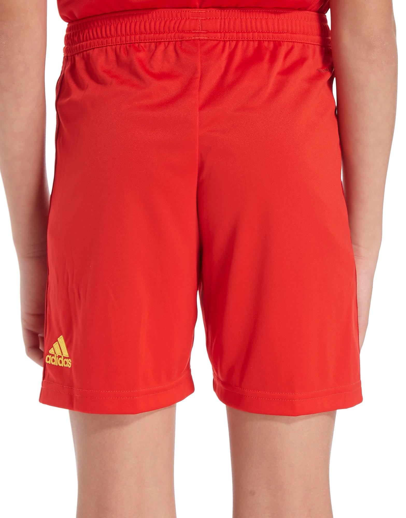 adidas Belgien 2018 Heimshorts Junior