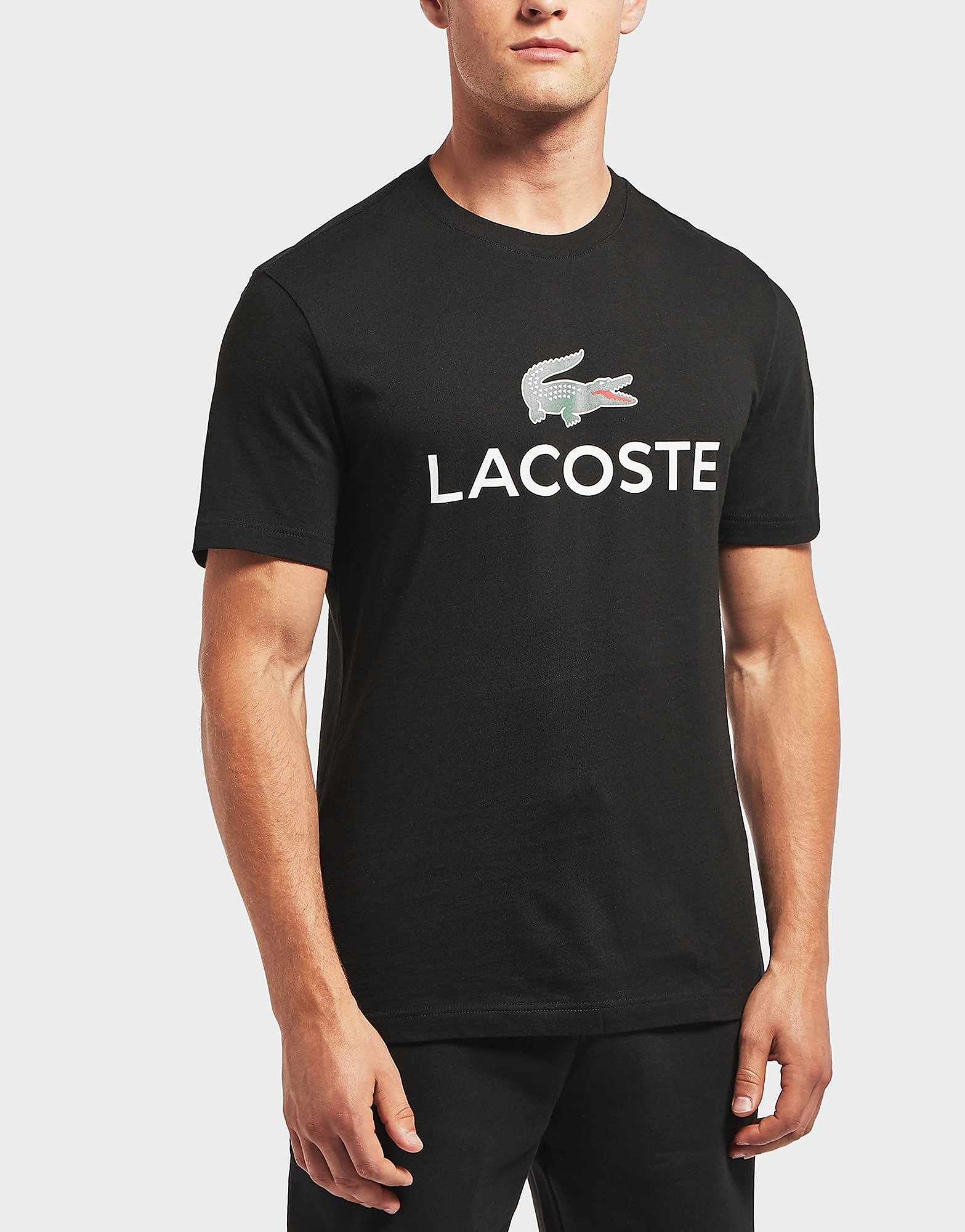 Lacoste Large Logo Short Sleeve T-Shirt