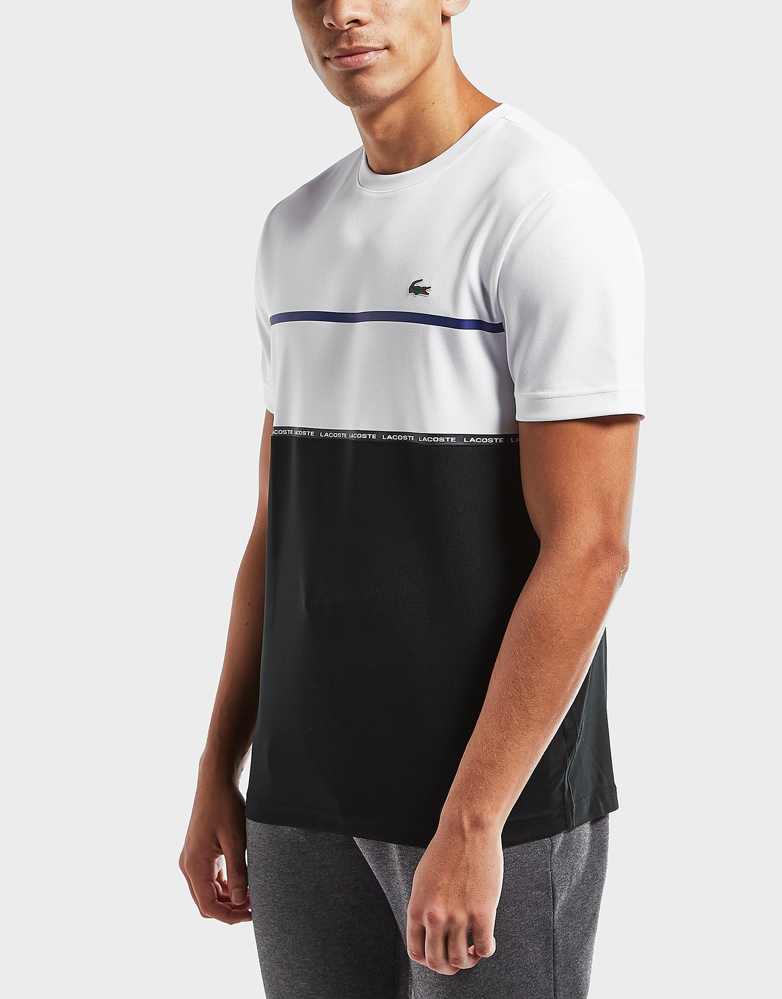 Lacoste Fall Colorblock Crew T-Shirt