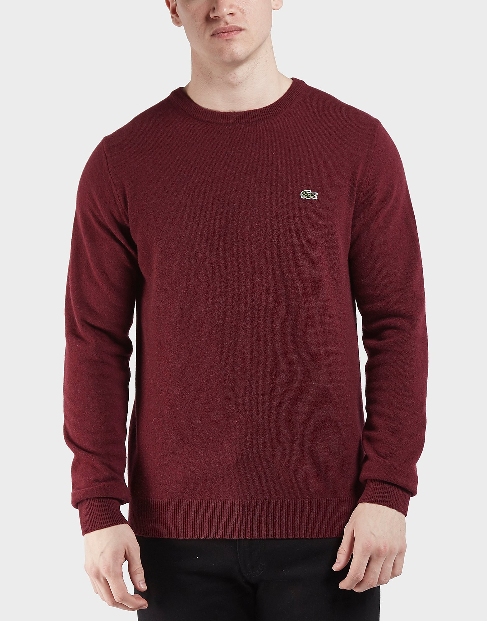 Lacoste Lambswool Knitted Jumper