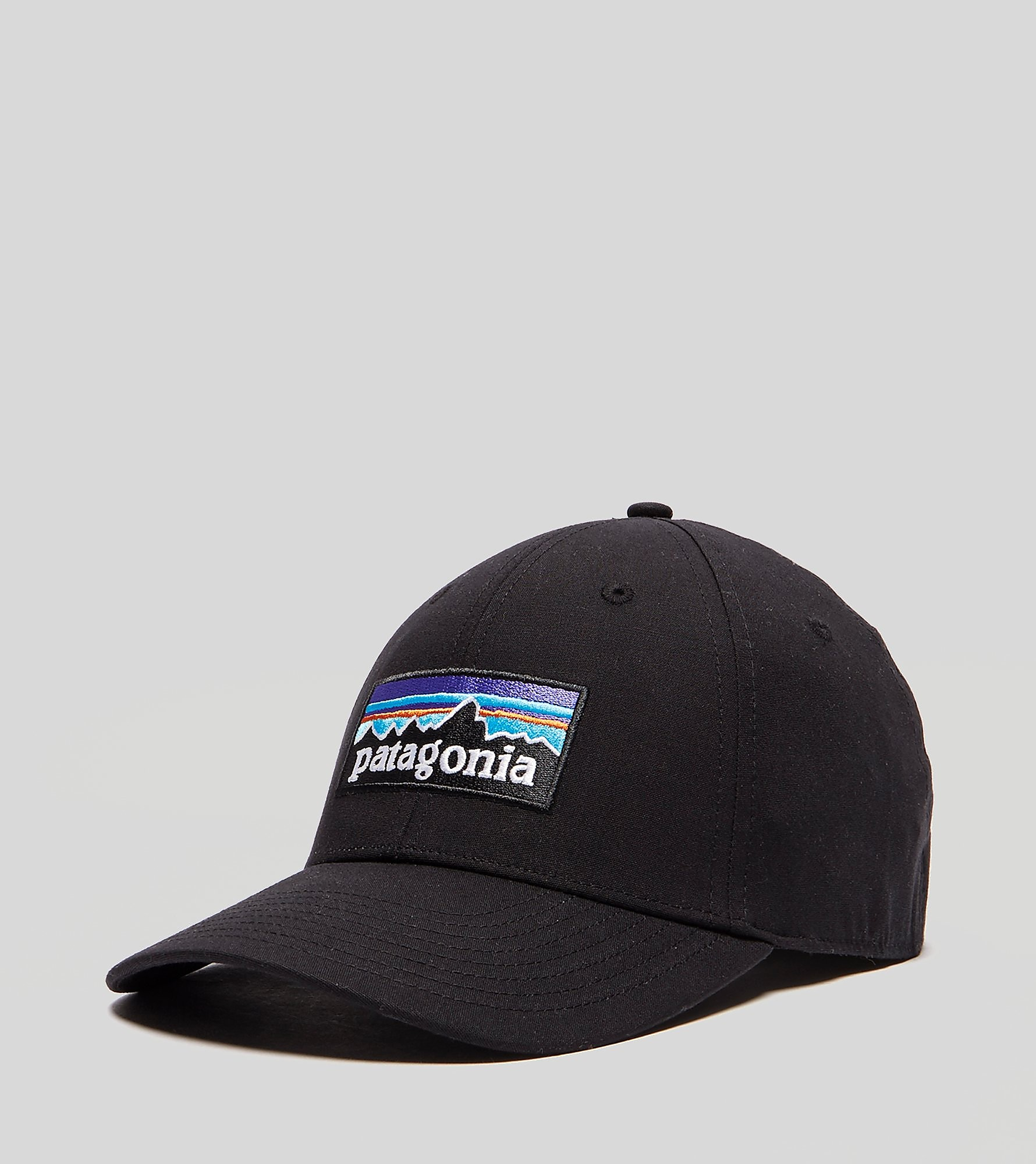 Patagonia P-6 Stretch Fitted Cap