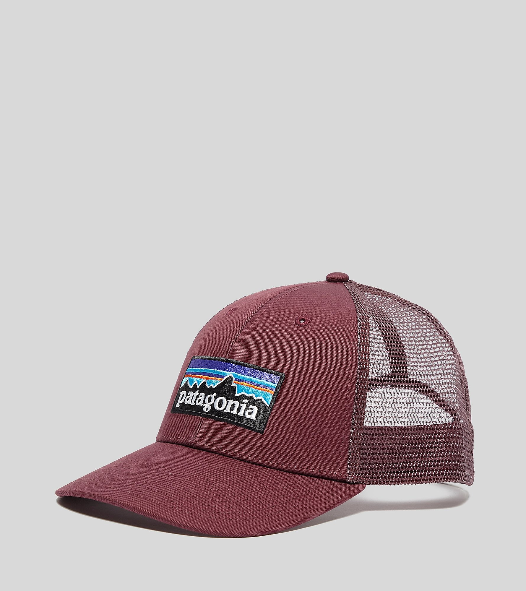 Patagonia P-6 LoPro Trucker Cap, Rood