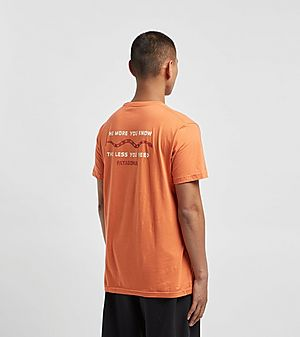 03379411309973 Patagonia The Less You Need T-Shirt ...