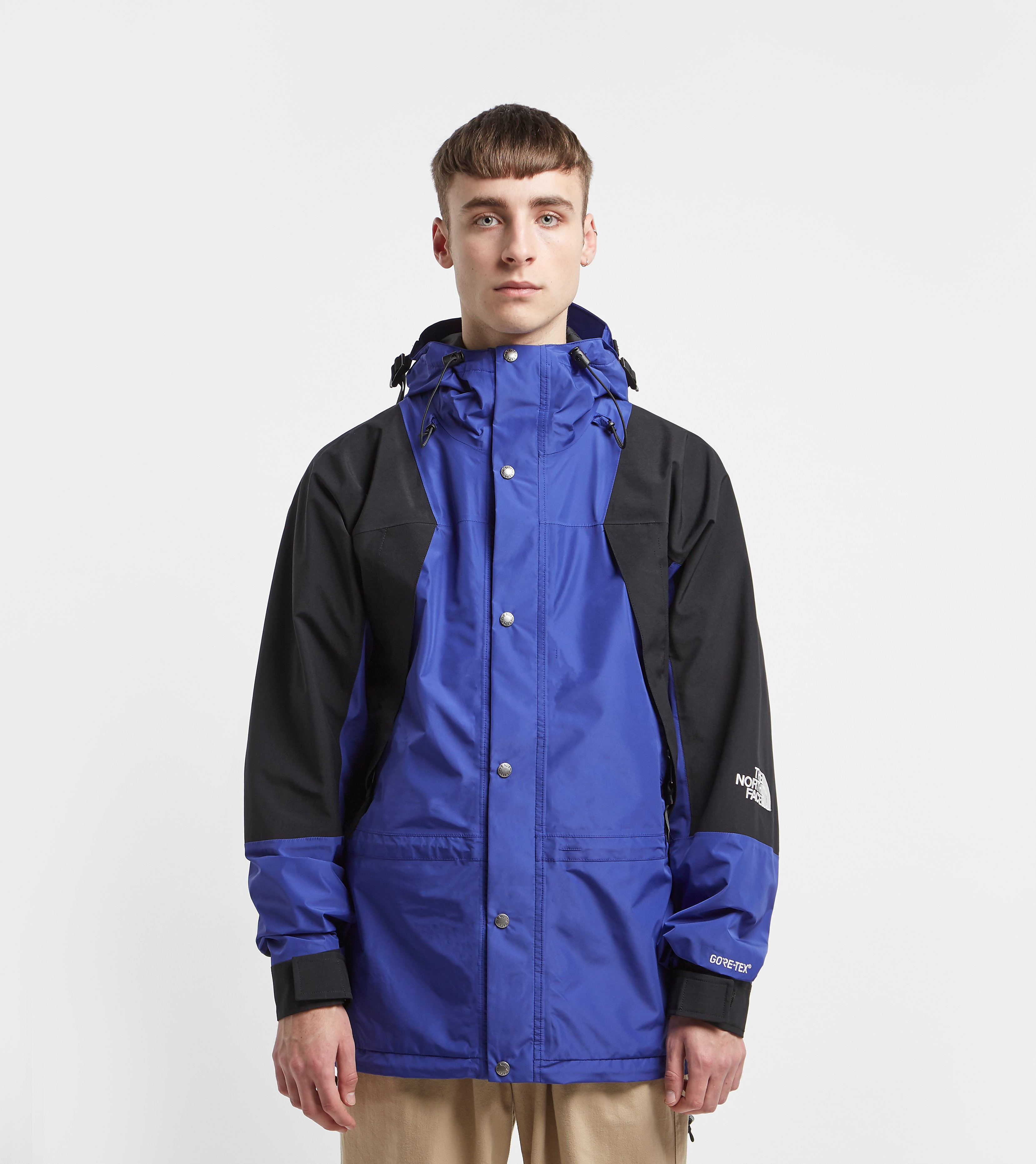 The North Face 1994 Retro Mountain Light Goretex Blue