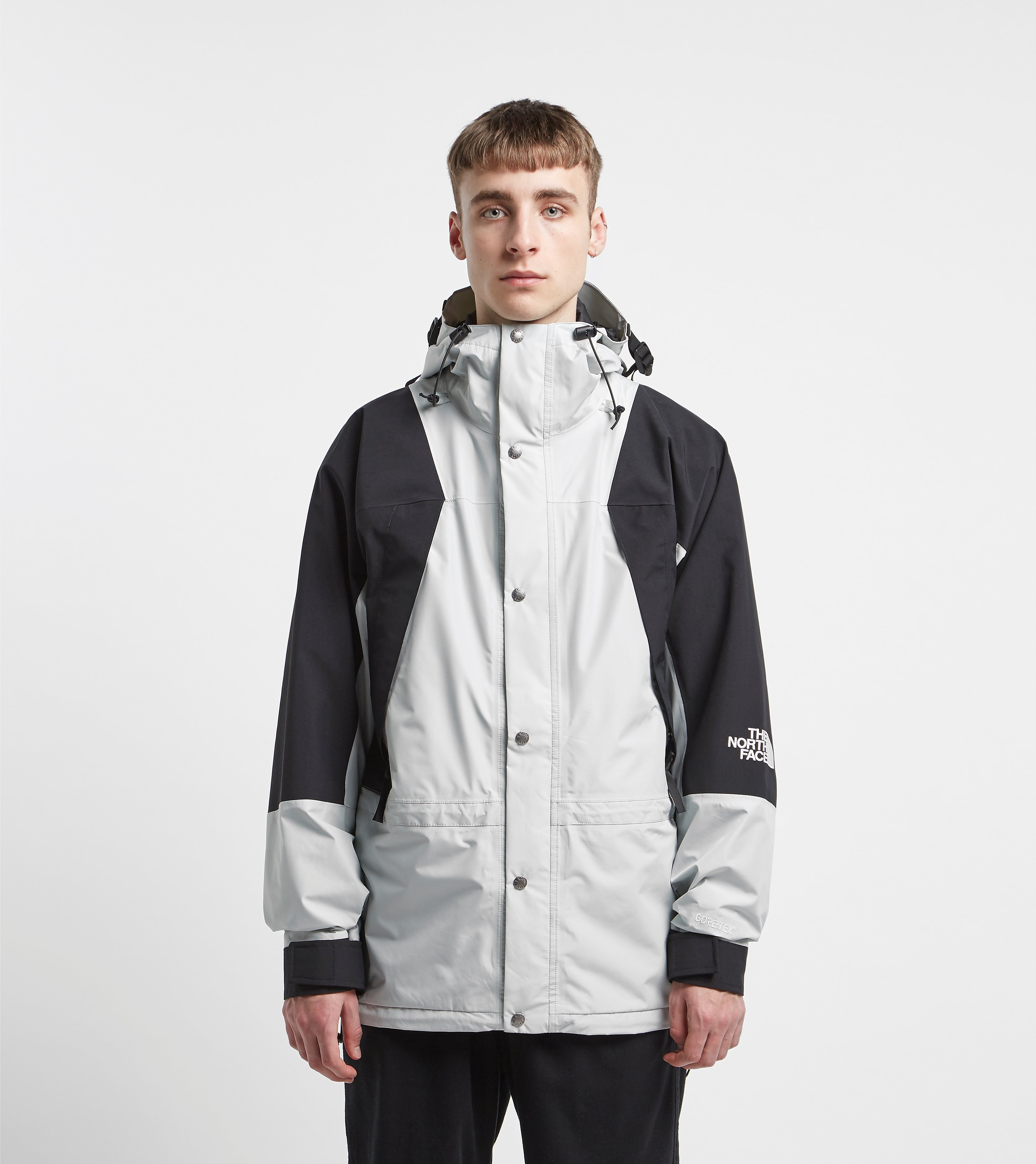 The North Face 1994 Retro Mountain Light Goretex Grey
