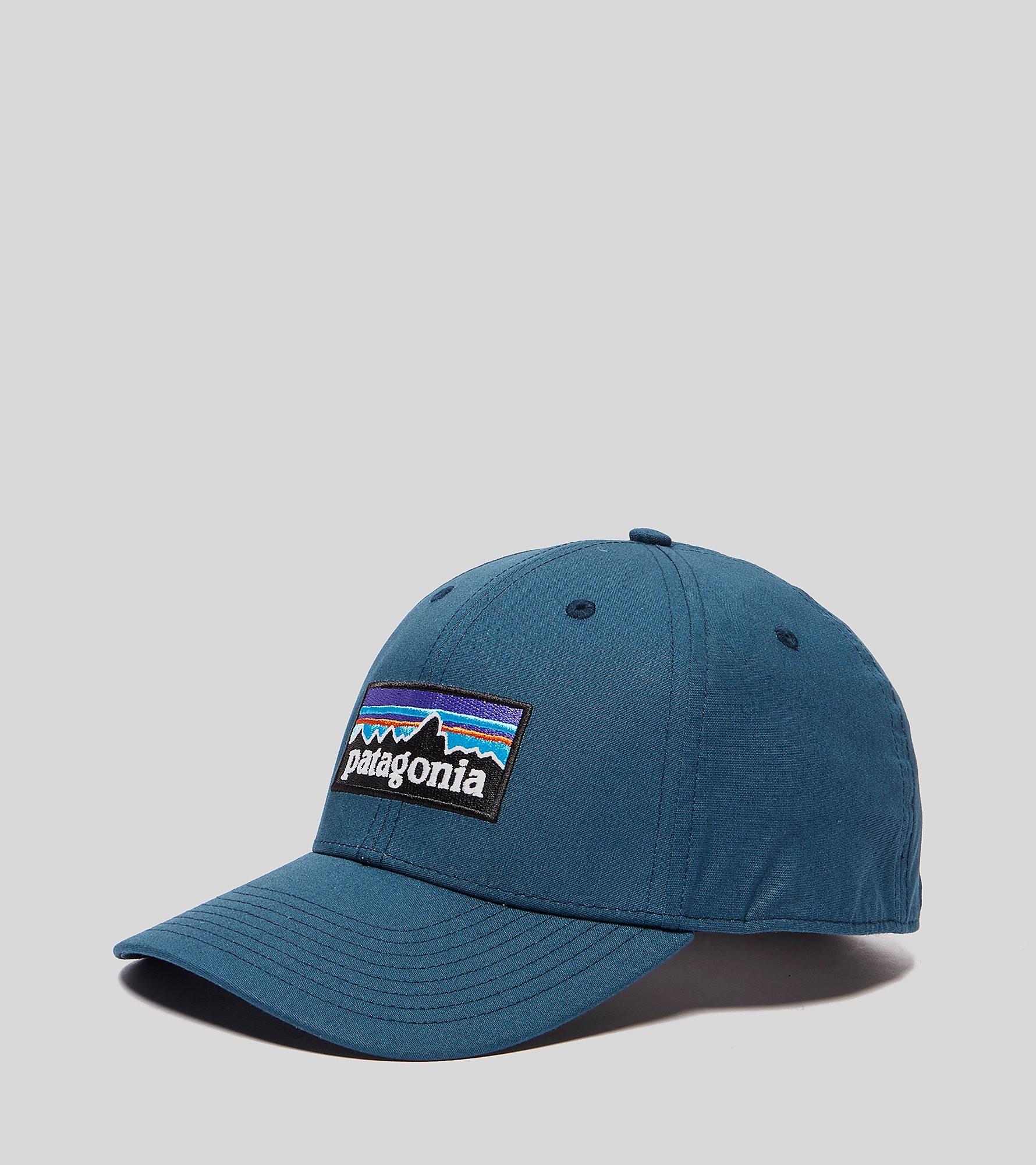 Patagonia P-6 Logo Curved Cap