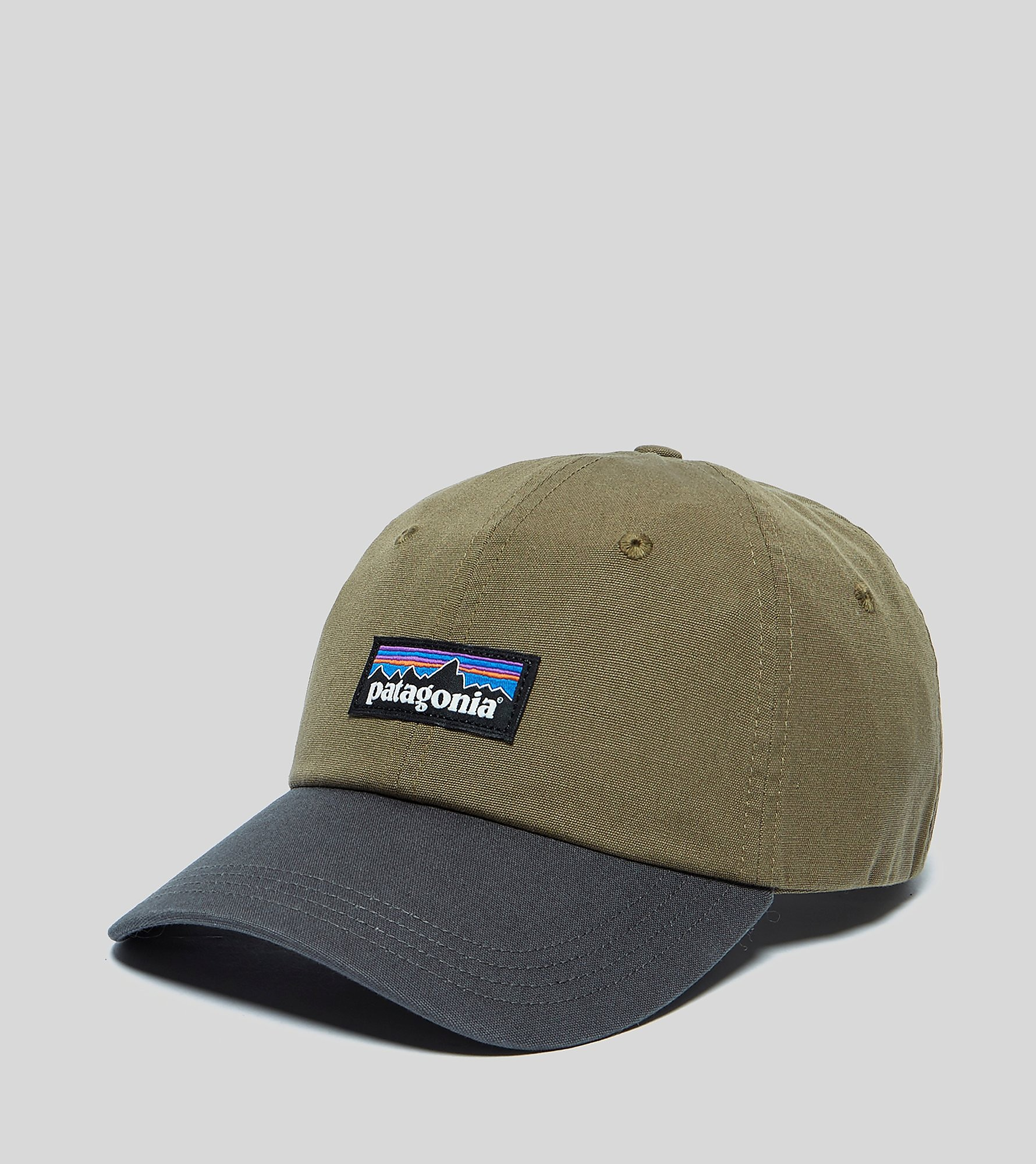 Patagonia P-6 Logo Cap