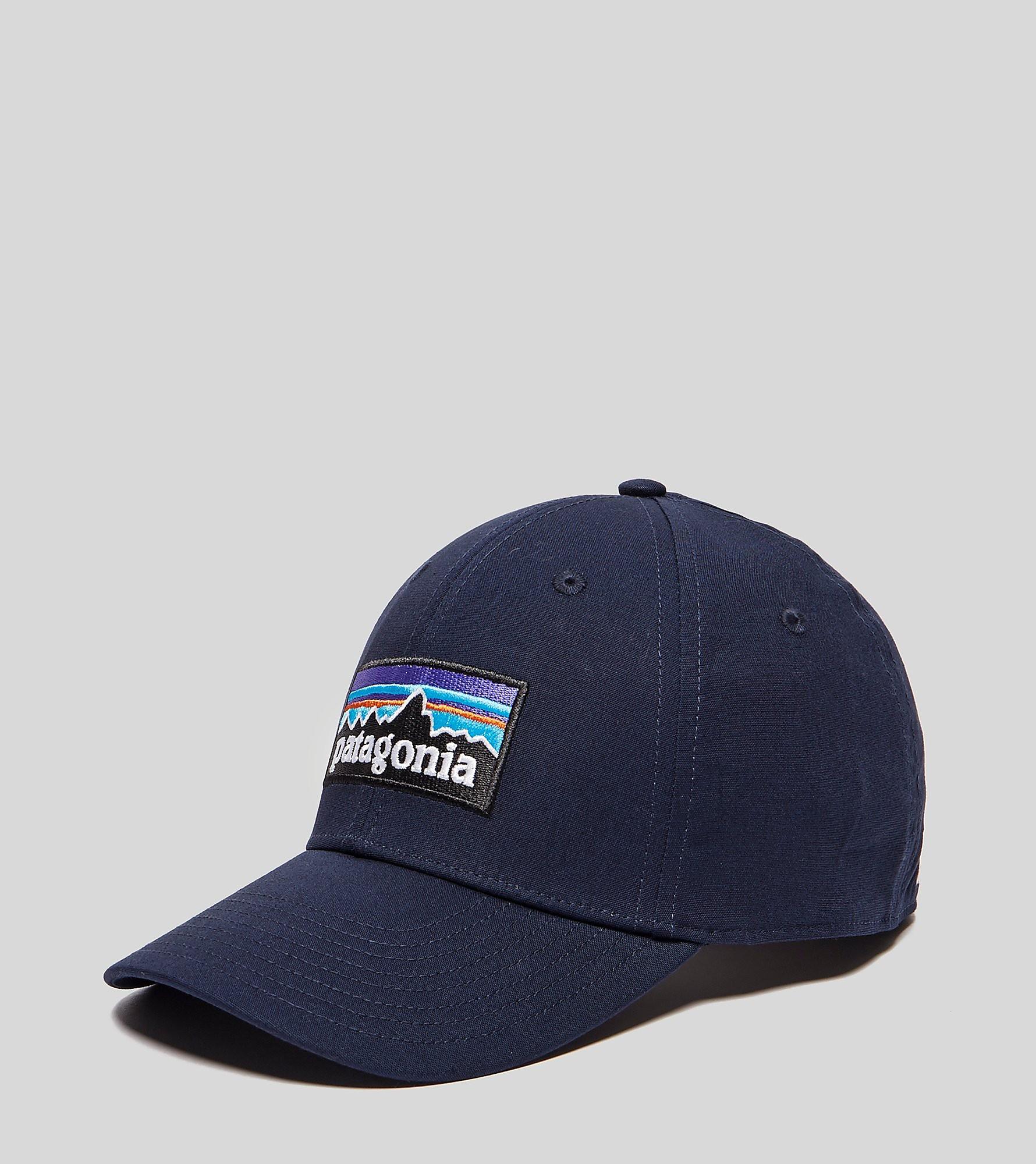 Patagonia P6 Stretch Cap