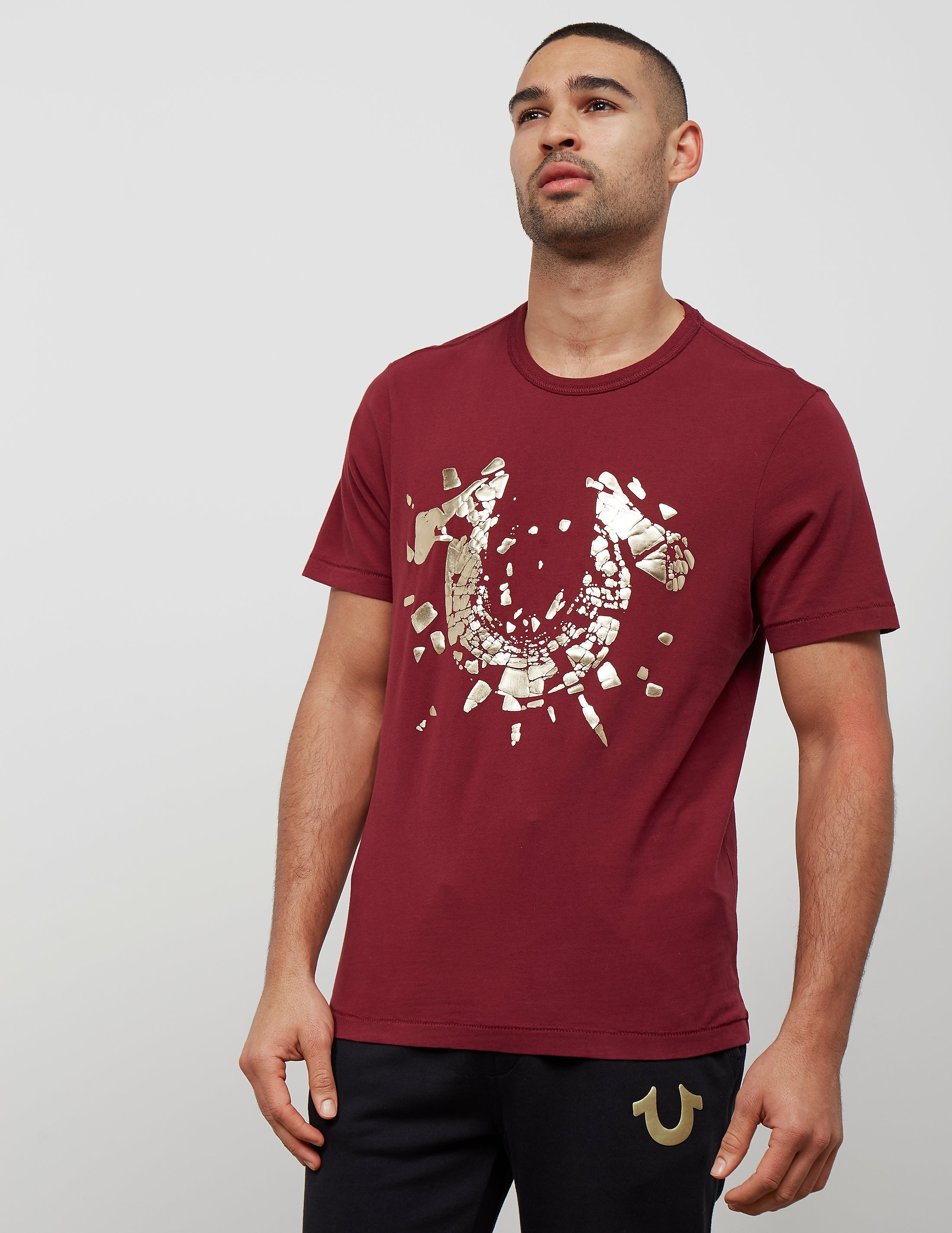 True Religion Shatter Short Sleeve T-Shirt